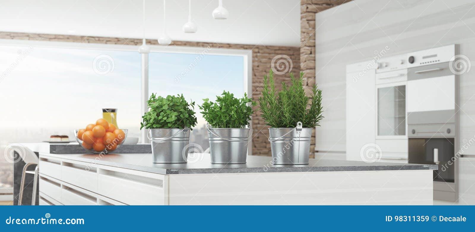 La Cucina Bianca Moderna Con Le Piante Aromatiche, 3d Rende L ...