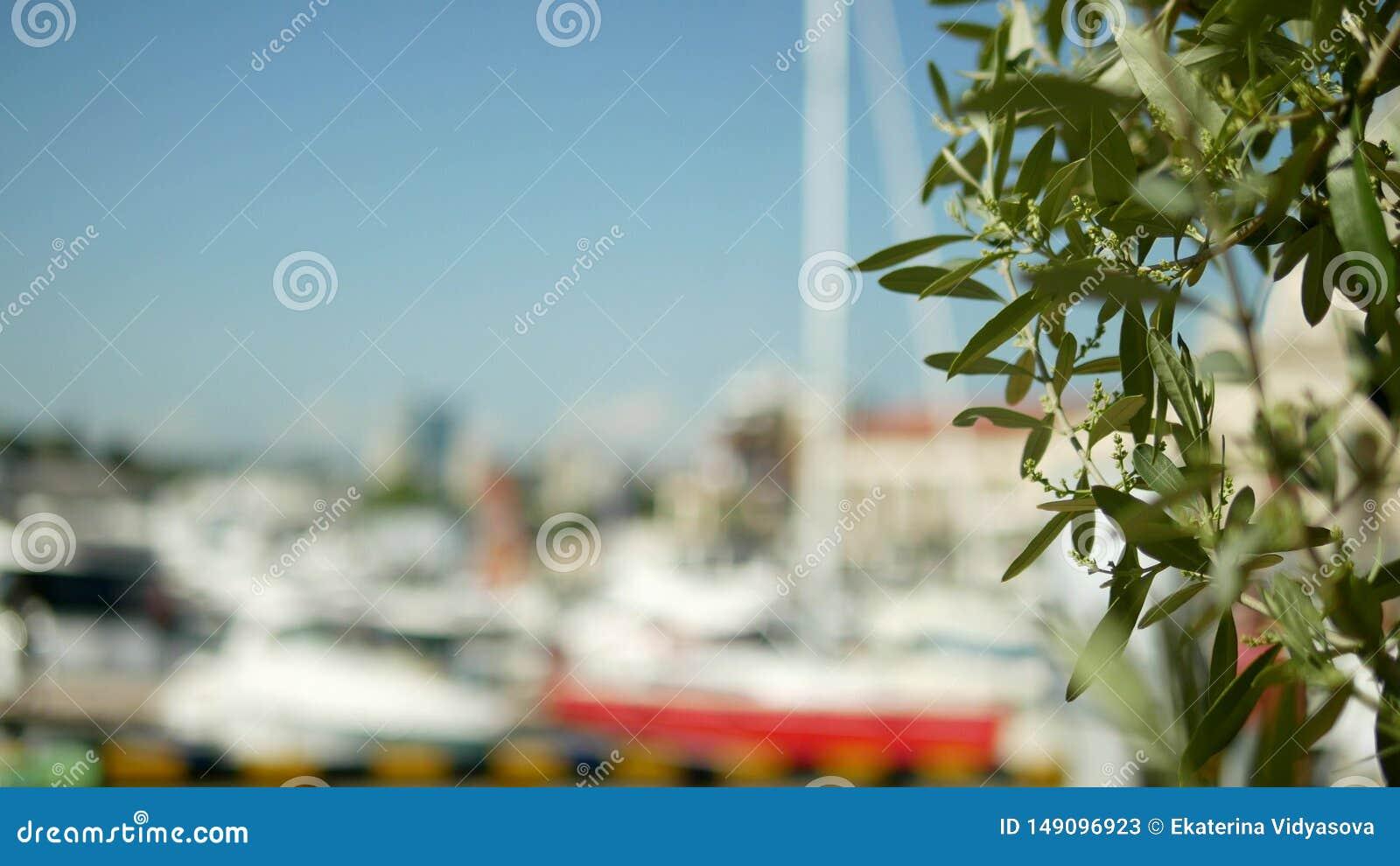 La date part sur un fond brouill? port maritime avec les m?ts blancs des yachts et des bateaux en mer