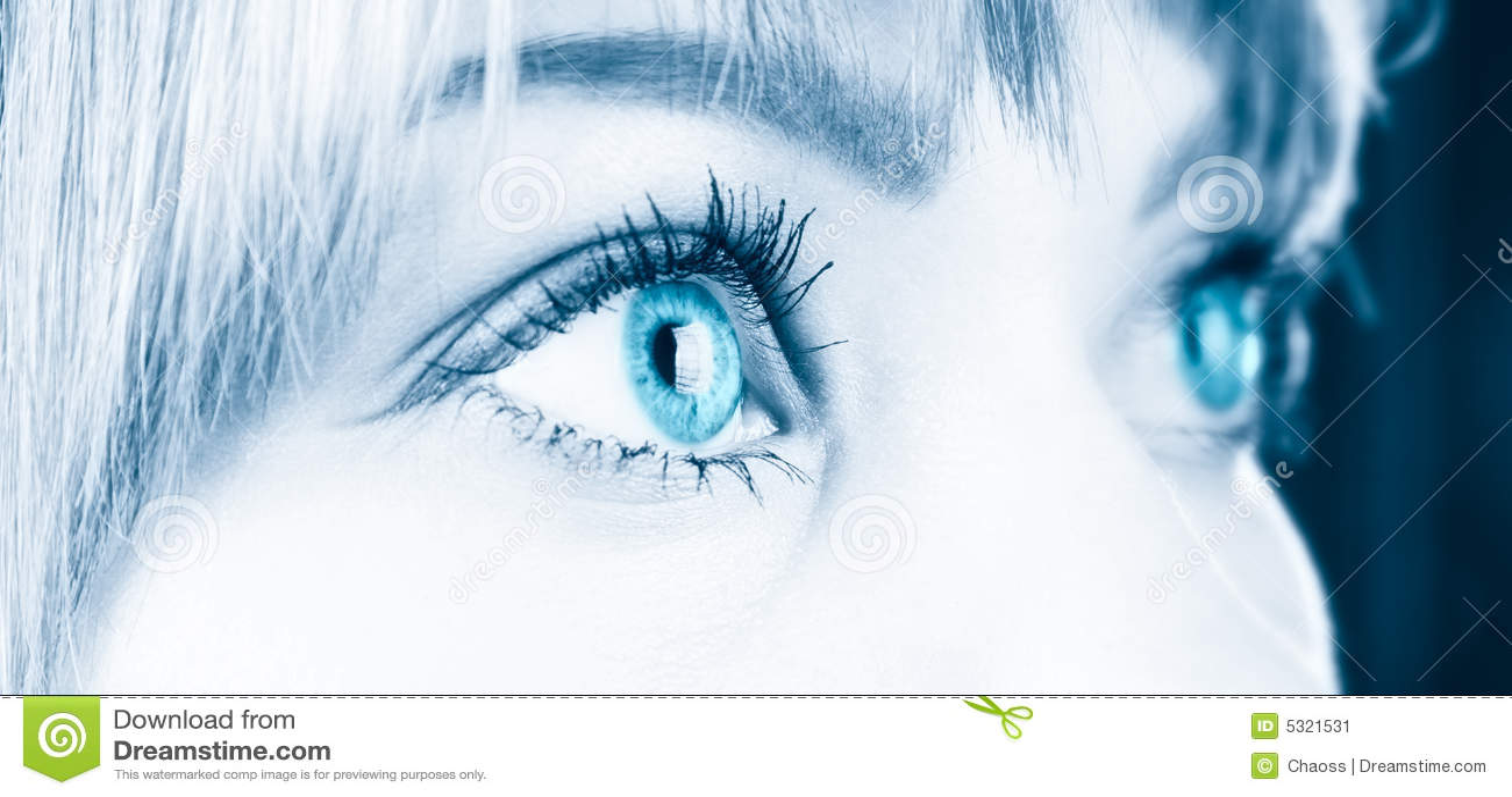 Download La Donna Eyes Il Primo Piano Immagine Stock - Immagine di fine, aside: 5321531