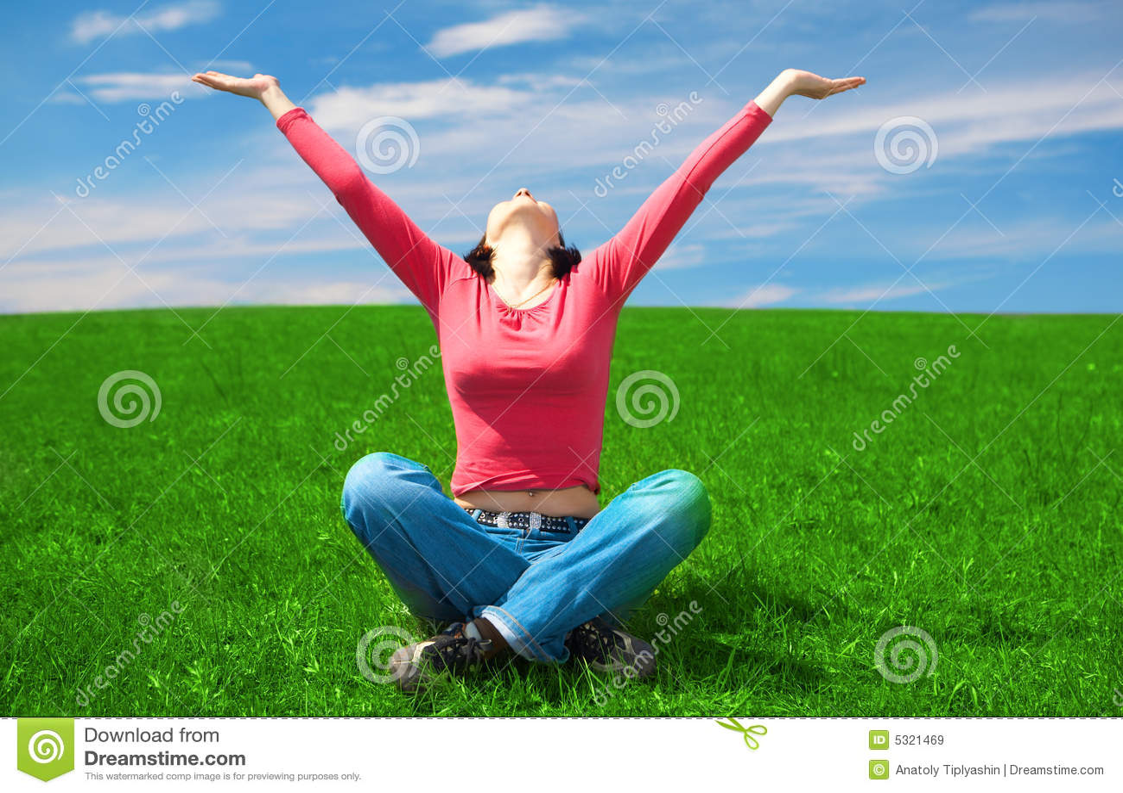 Download La Donna Si Siede Nel Campo Verde Immagine Stock - Immagine di scenico, donna: 5321469