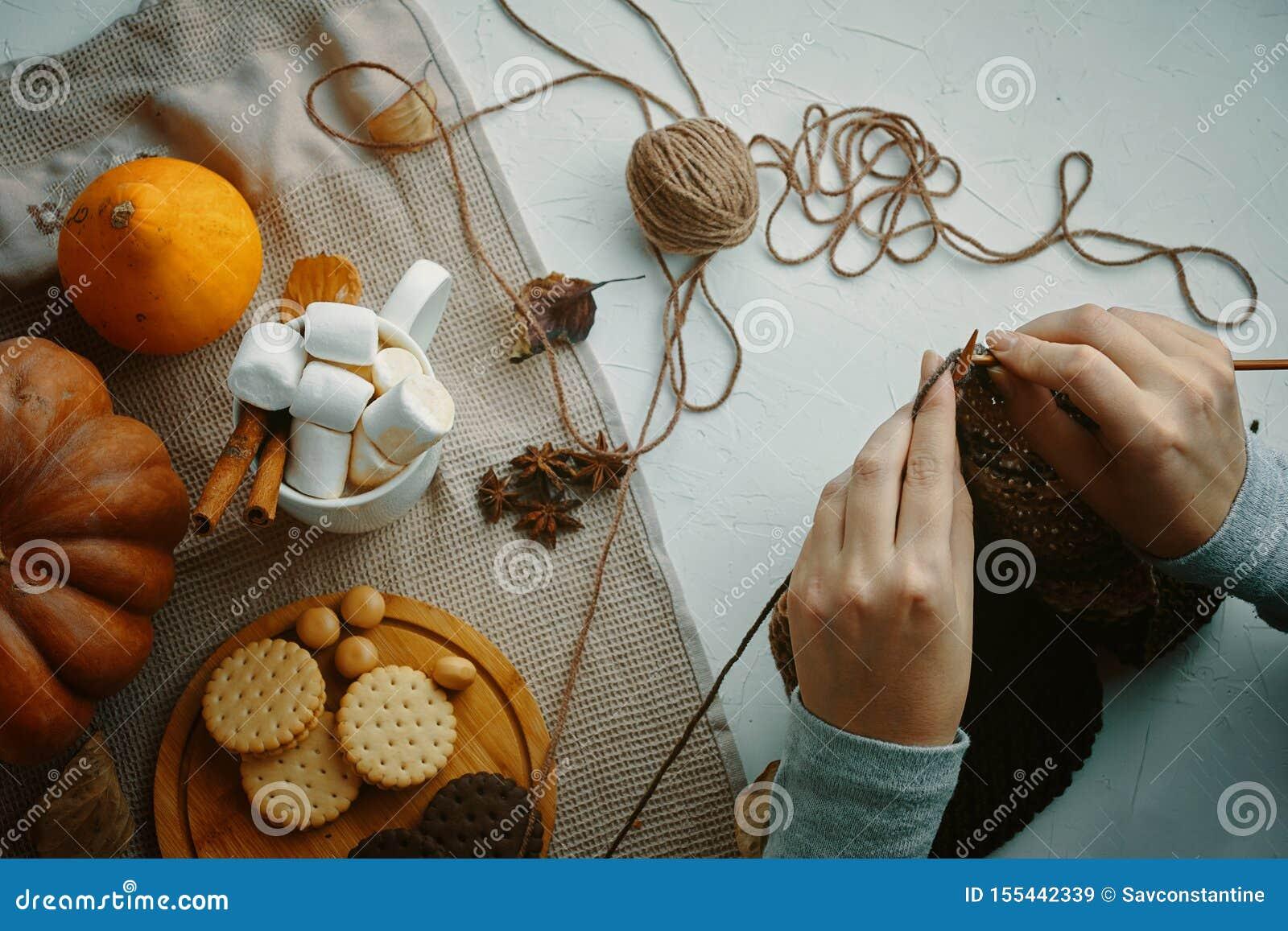 La donna tricotta i vestiti di lana