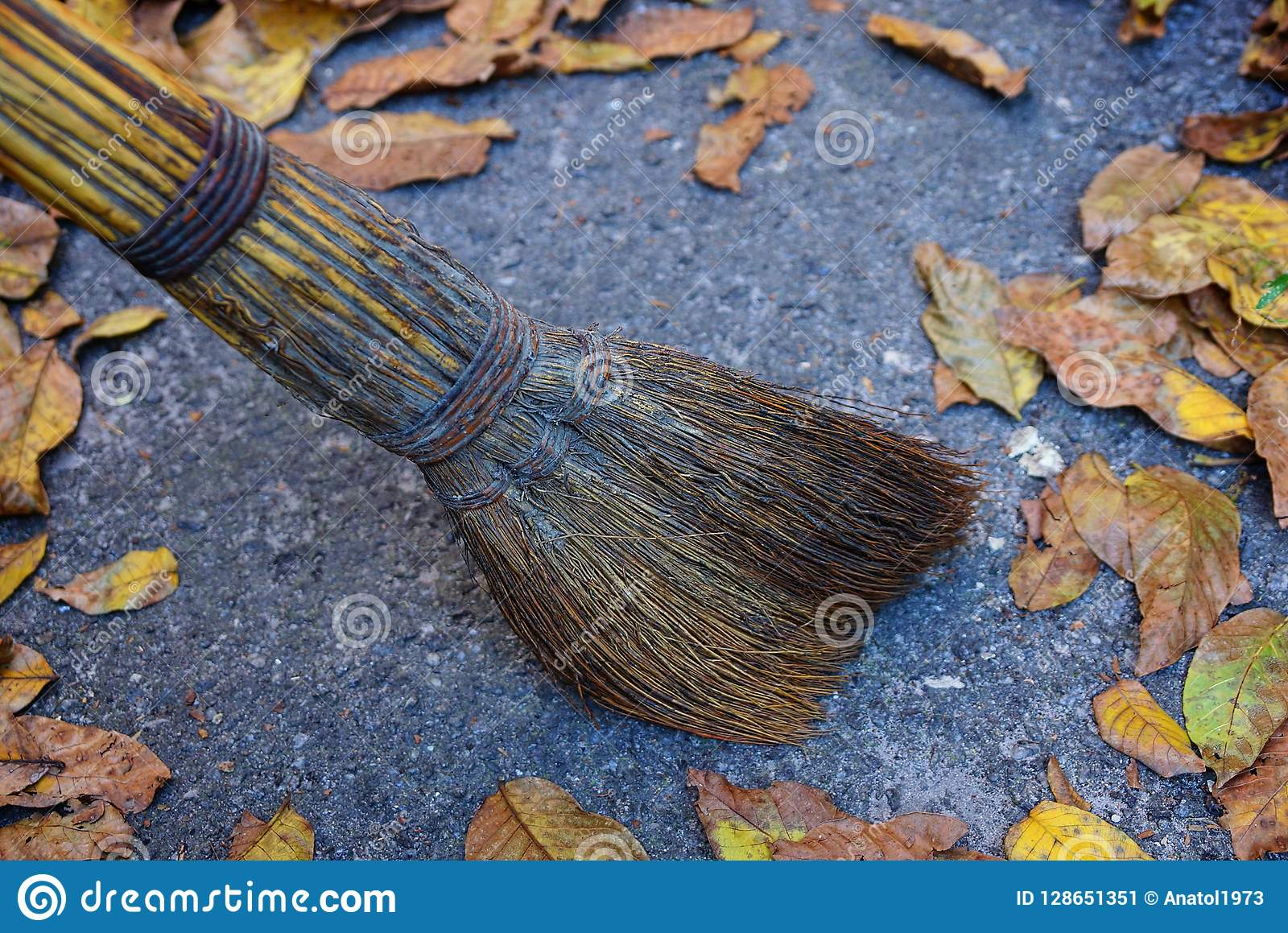 La escoba de Brown barre las hojas secas para arriba caidas en el asfalto