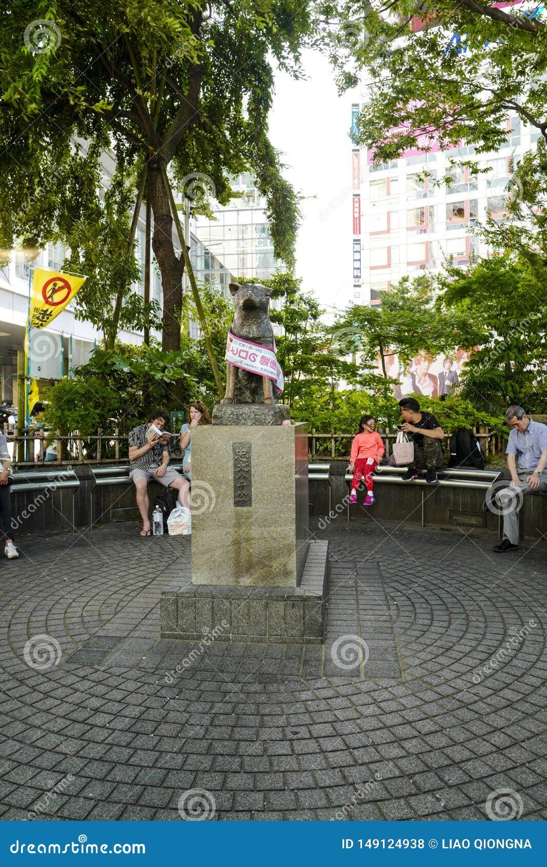La estatua de Hachiko en Shibuya Era un perro japonés de Akita recordaba para su lealtad notable a su dueño,  Ueno de HidesaburÅ