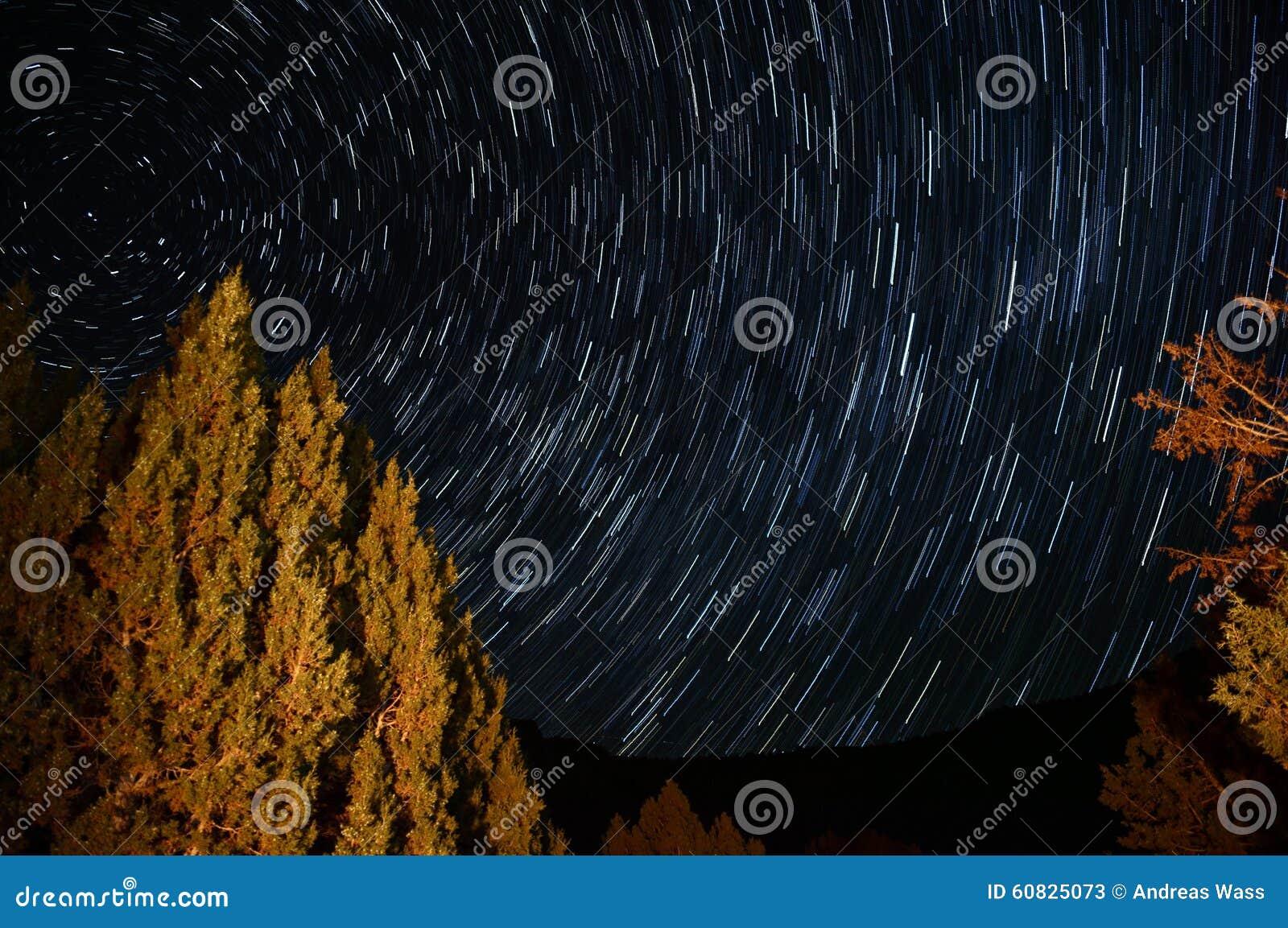 La estrella se arrastra alrededor de la estrella del polo con un árbol iluminado por una hoguera