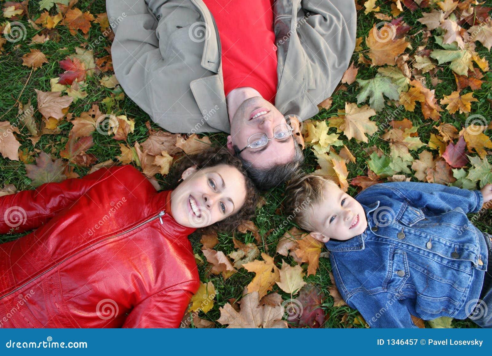 La famiglia si trova sulle foglie di acero