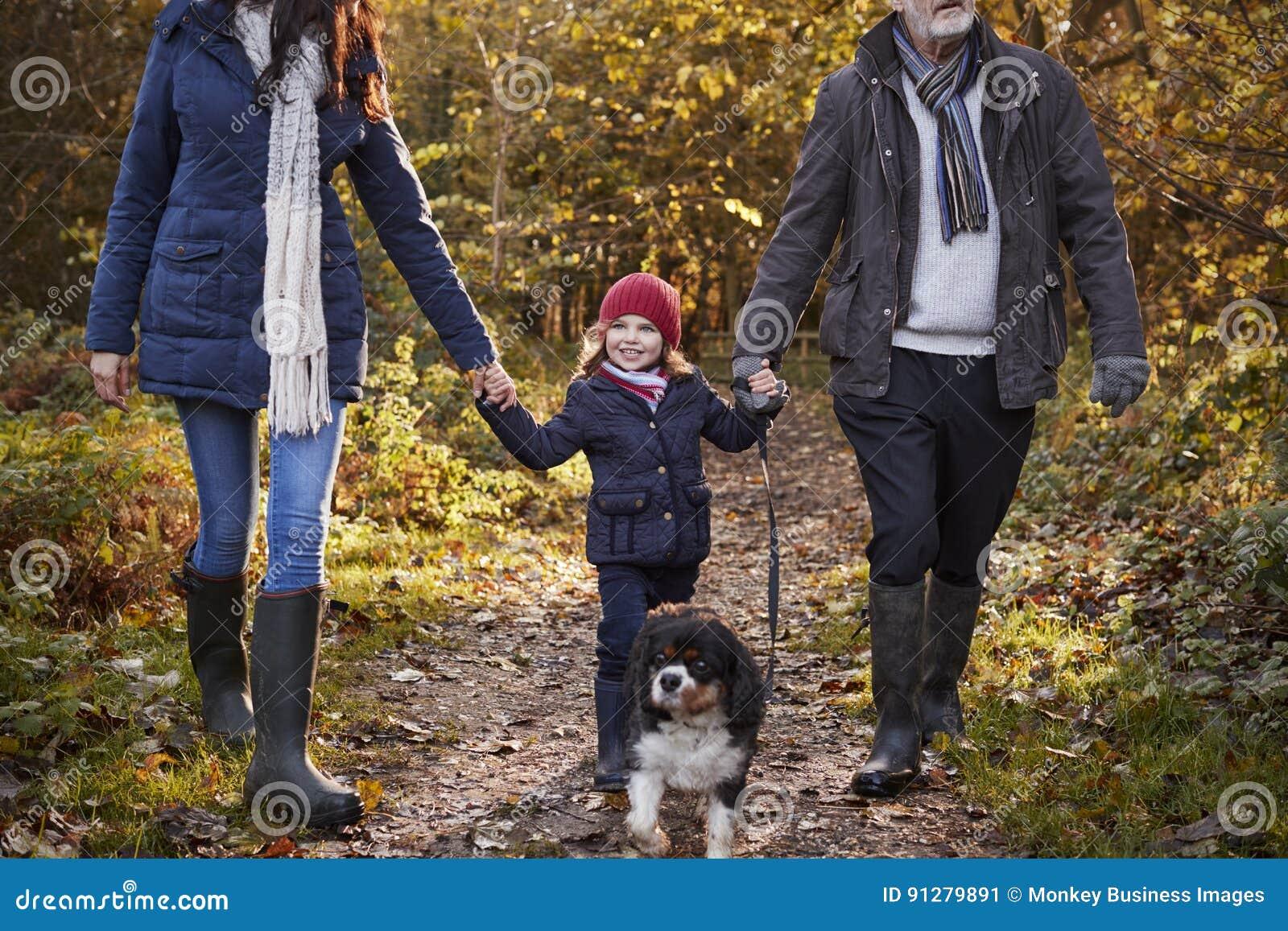 la famille multi de g n ration prennent le chien pour la promenade dans le paysage d 39 automne. Black Bedroom Furniture Sets. Home Design Ideas