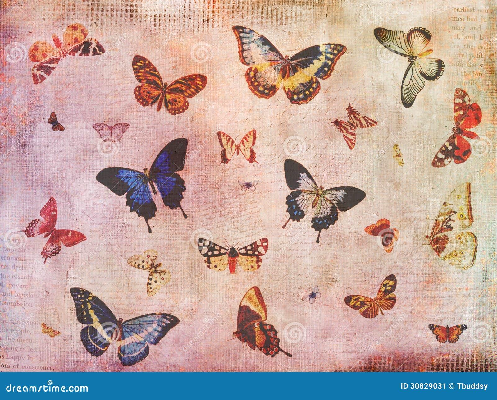 La farfalla d annata segna il collage con lettere del fondo