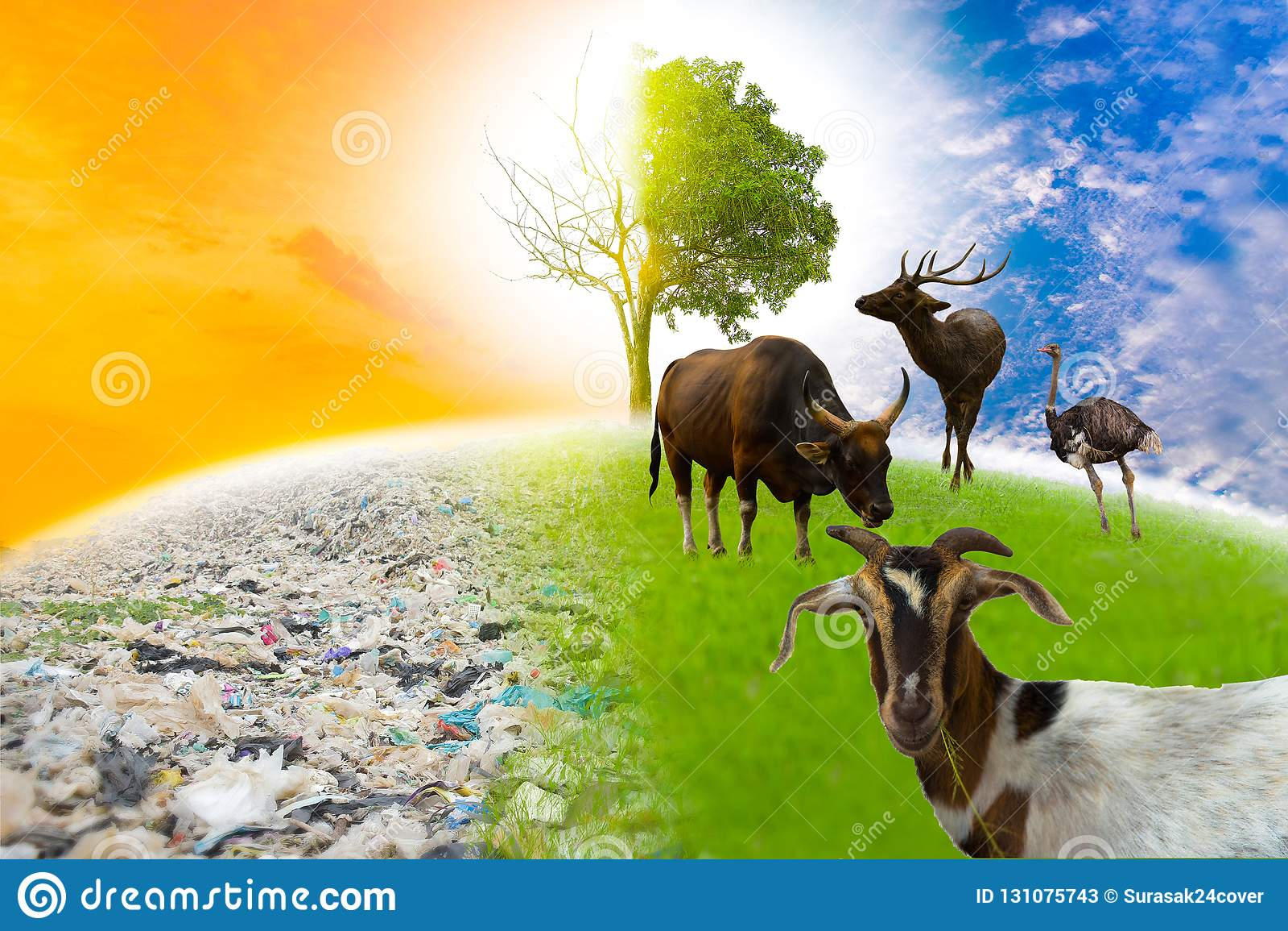 La faune n existe pas monde vert avec des animaux et les grands arbres aiment le monde