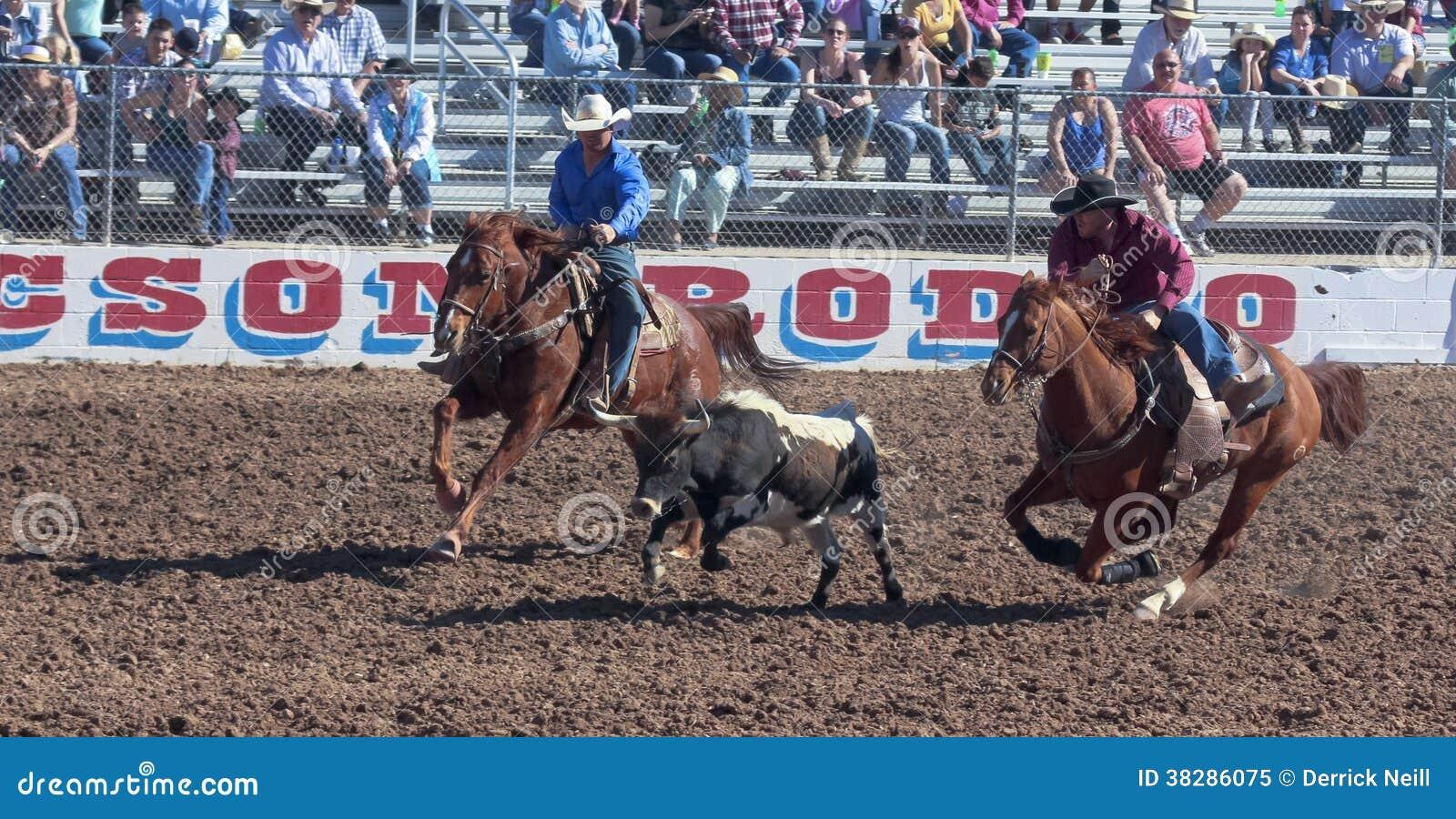 Rodeo Fans Editorial Image Cartoondealer Com 58493782