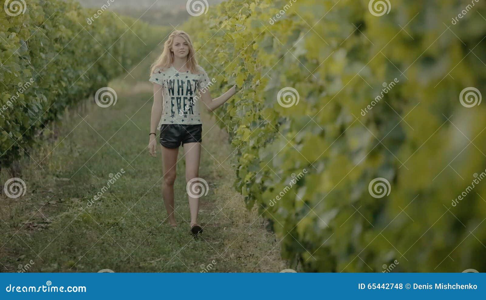 Des Gaie Vignes Banque Les Marche Dans Rangées Fille Entre De La bgy7Yvf6