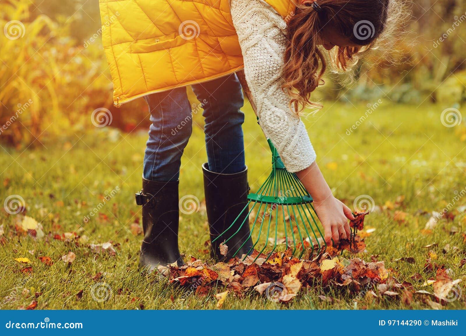 La fille heureuse d enfant jouant le petit jardinier en automne et sélectionnant part dans le panier Travail saisonnier de jardin