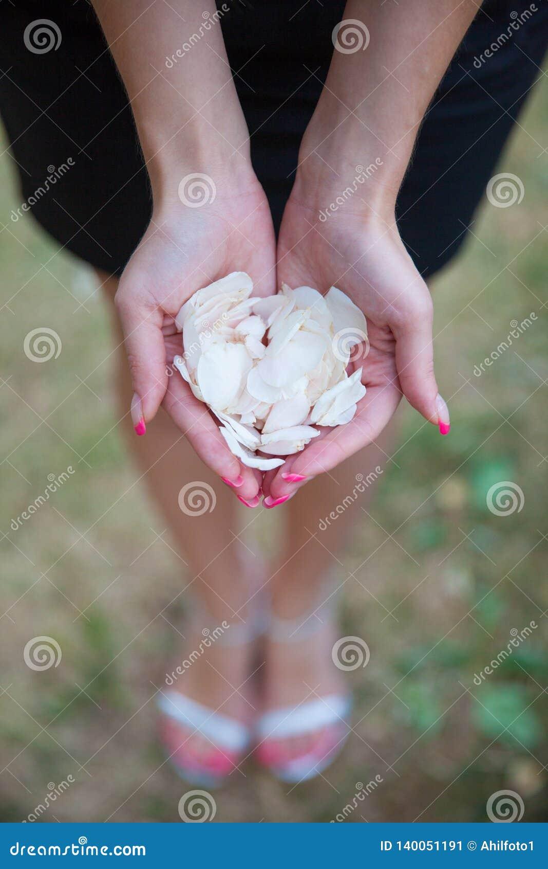 La fille tient les pétales blancs des fleurs