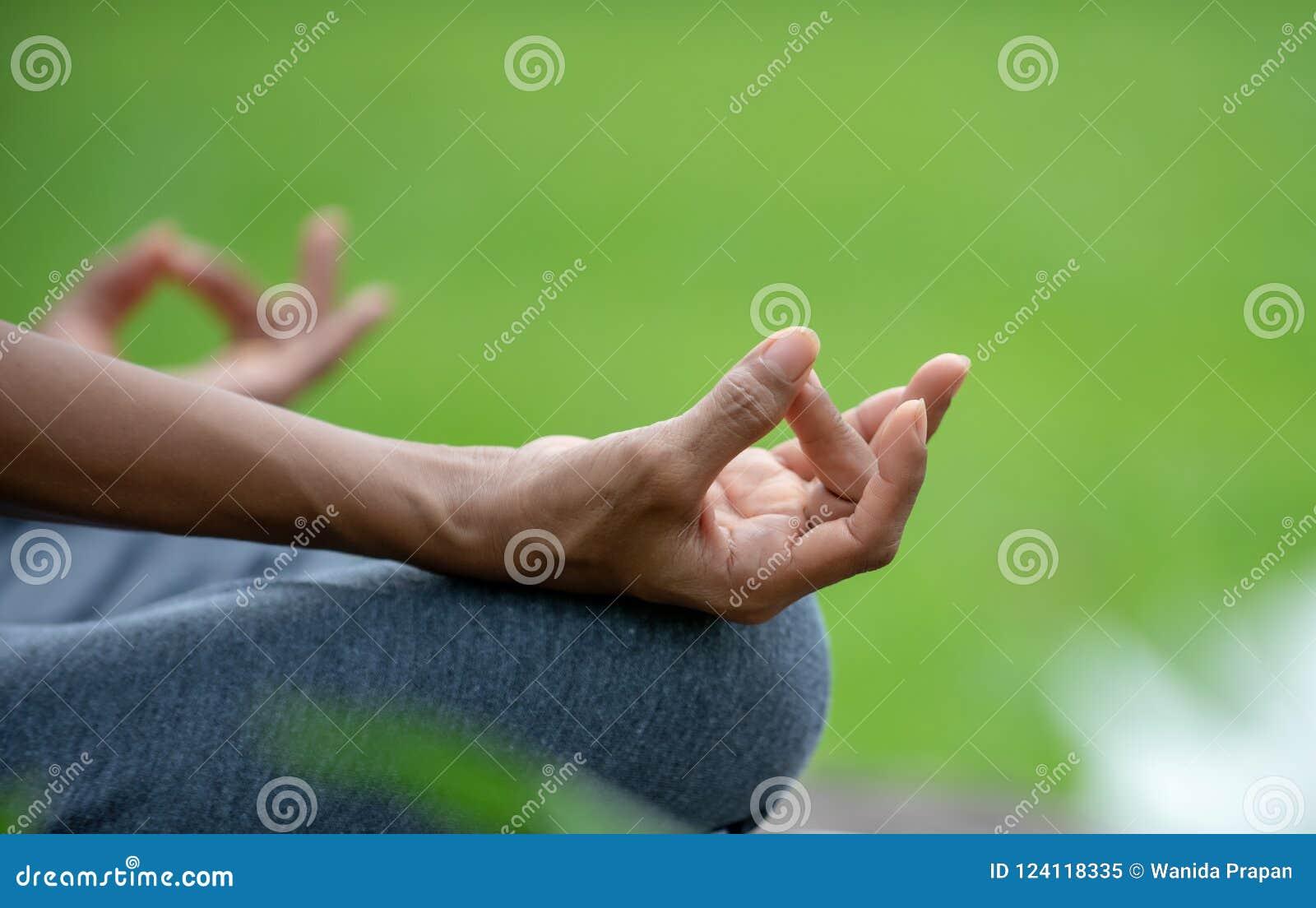 La fin vers le haut du yoga supérieur de femme de main et le lotus posent la méditation et détendent en parc naturel