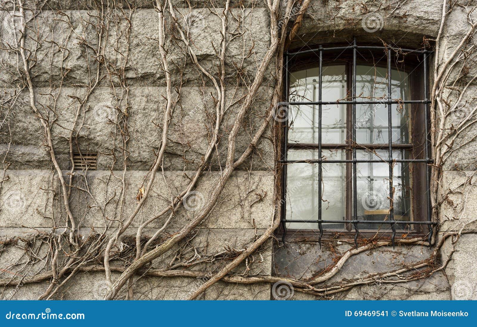 La finestra con ferro battuto in castello medievale si - Epatite c periodo finestra ...