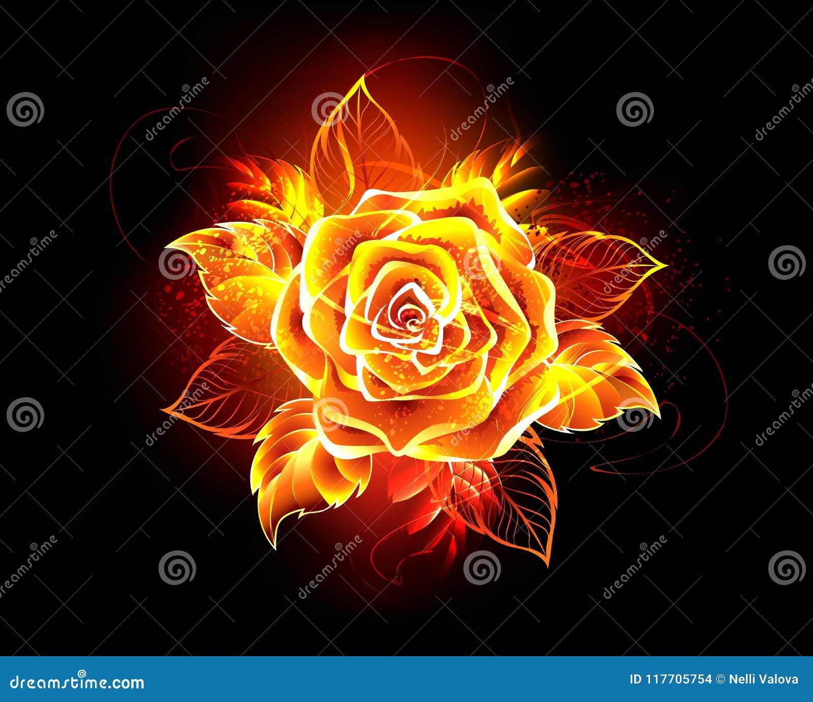La flamme rose de floraison du feu s est levée