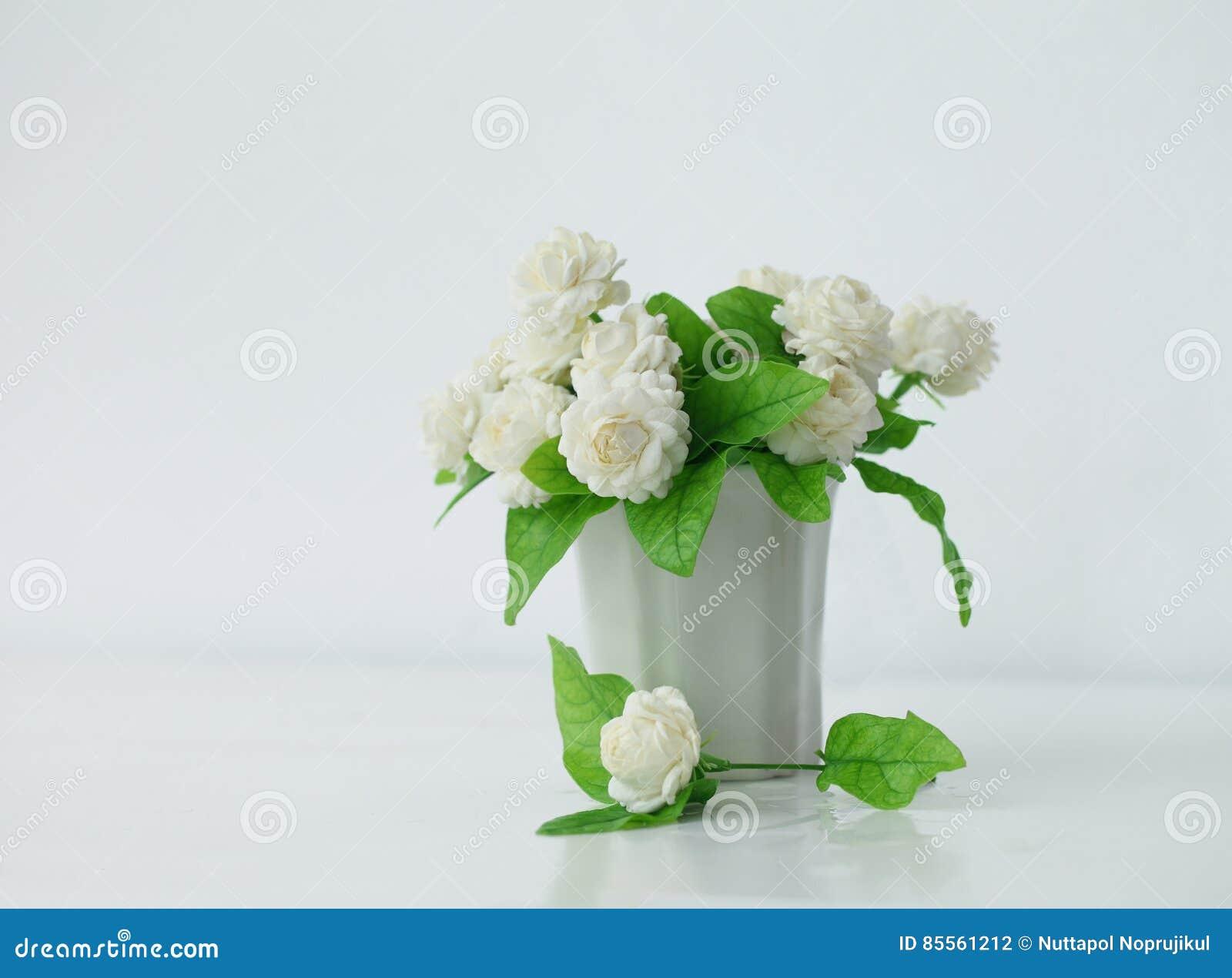 La Fleur Artificielle De Jasmin Dans Le Pot A La Table Blanche Avec