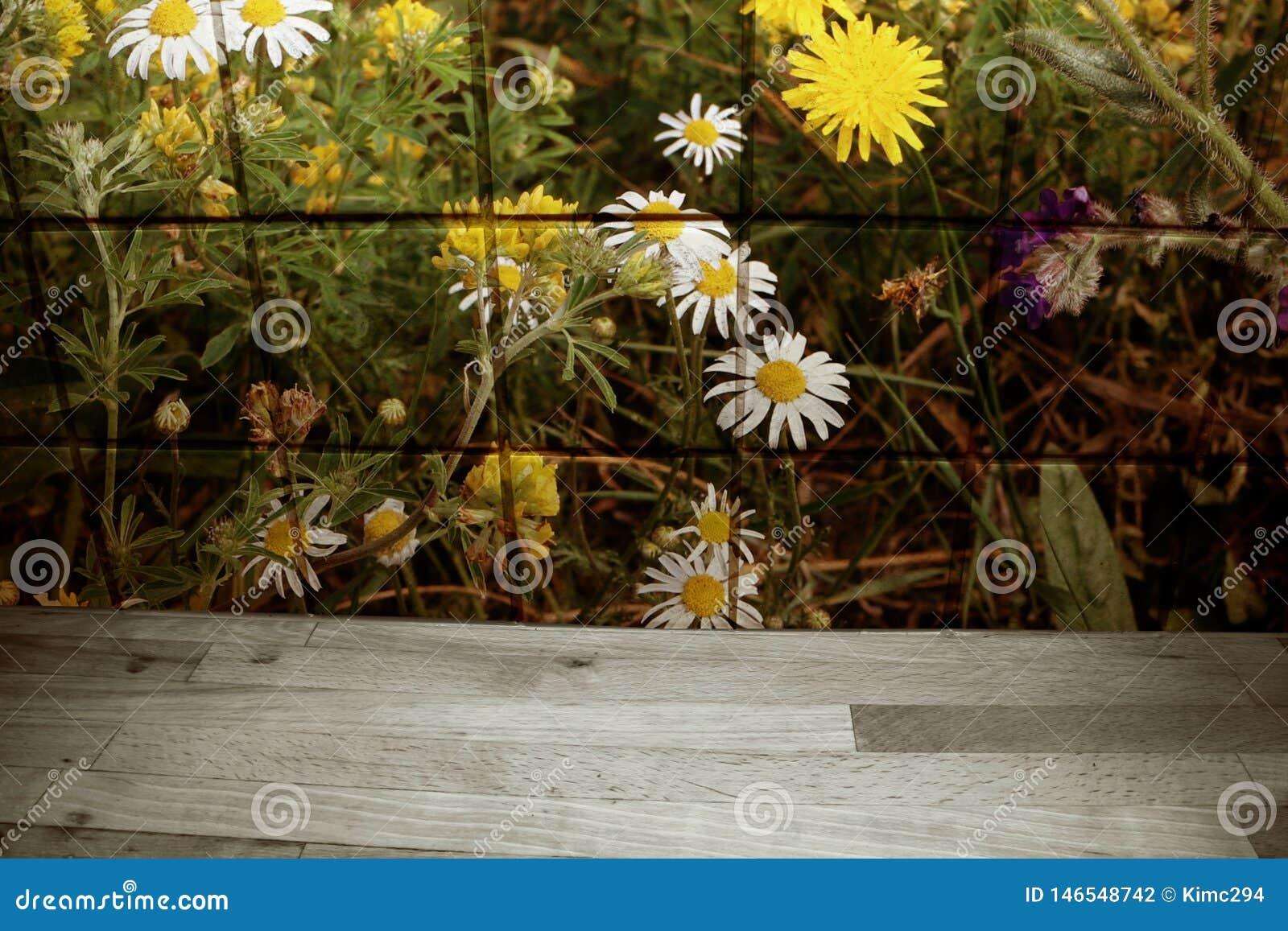 La fleur a modelé des tuiles avec des estrades et des pissenlits