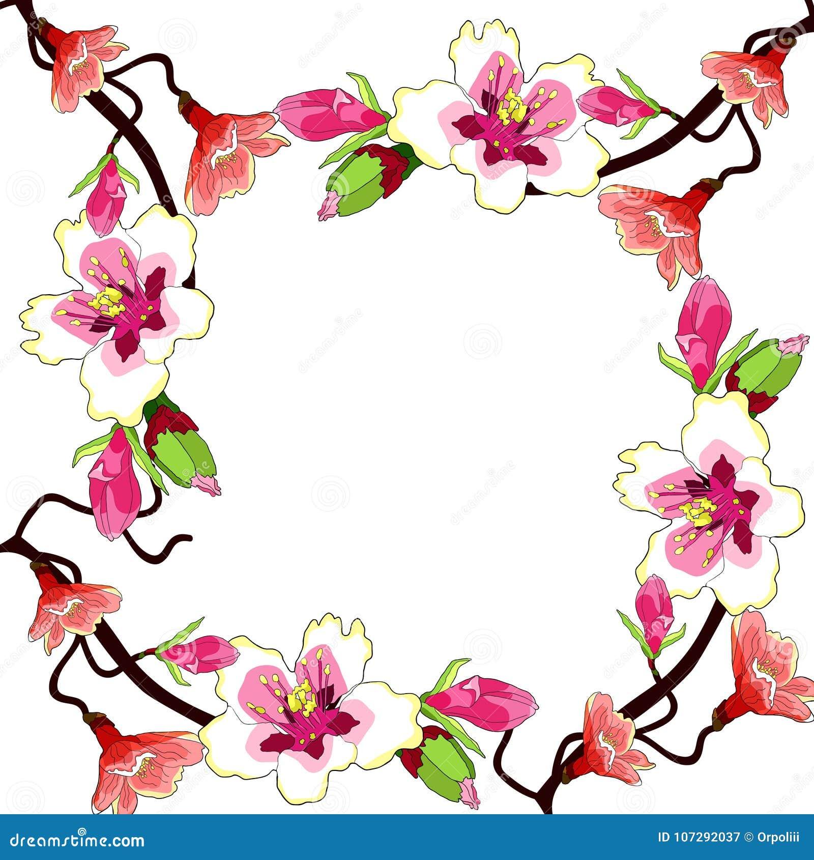 La flor de la rama de la almendra florece un ejemplo del vector de la nuez