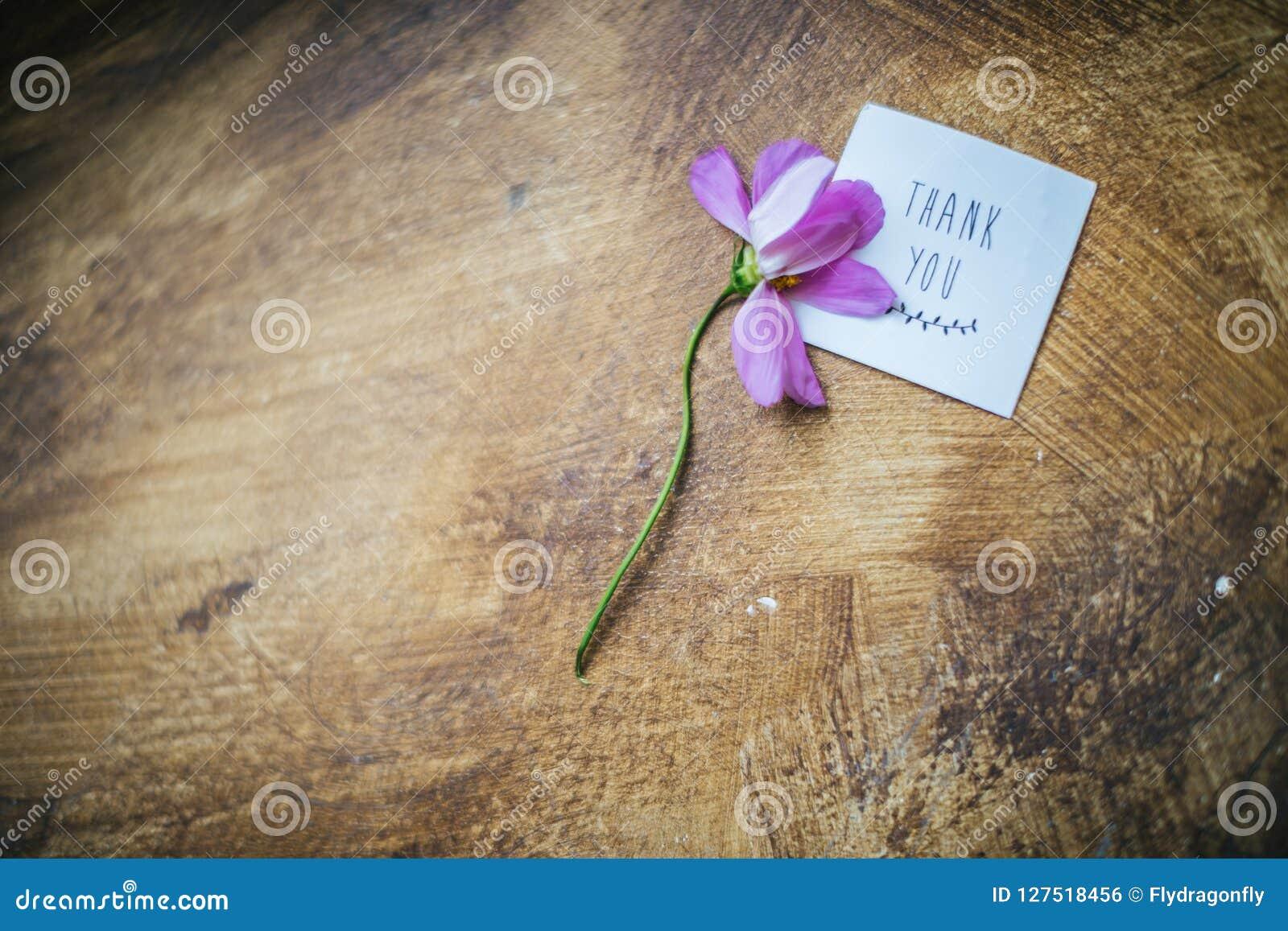 La Flor Y La Tarjeta Marchitadas Con Una Inscripción Le Agradecen En