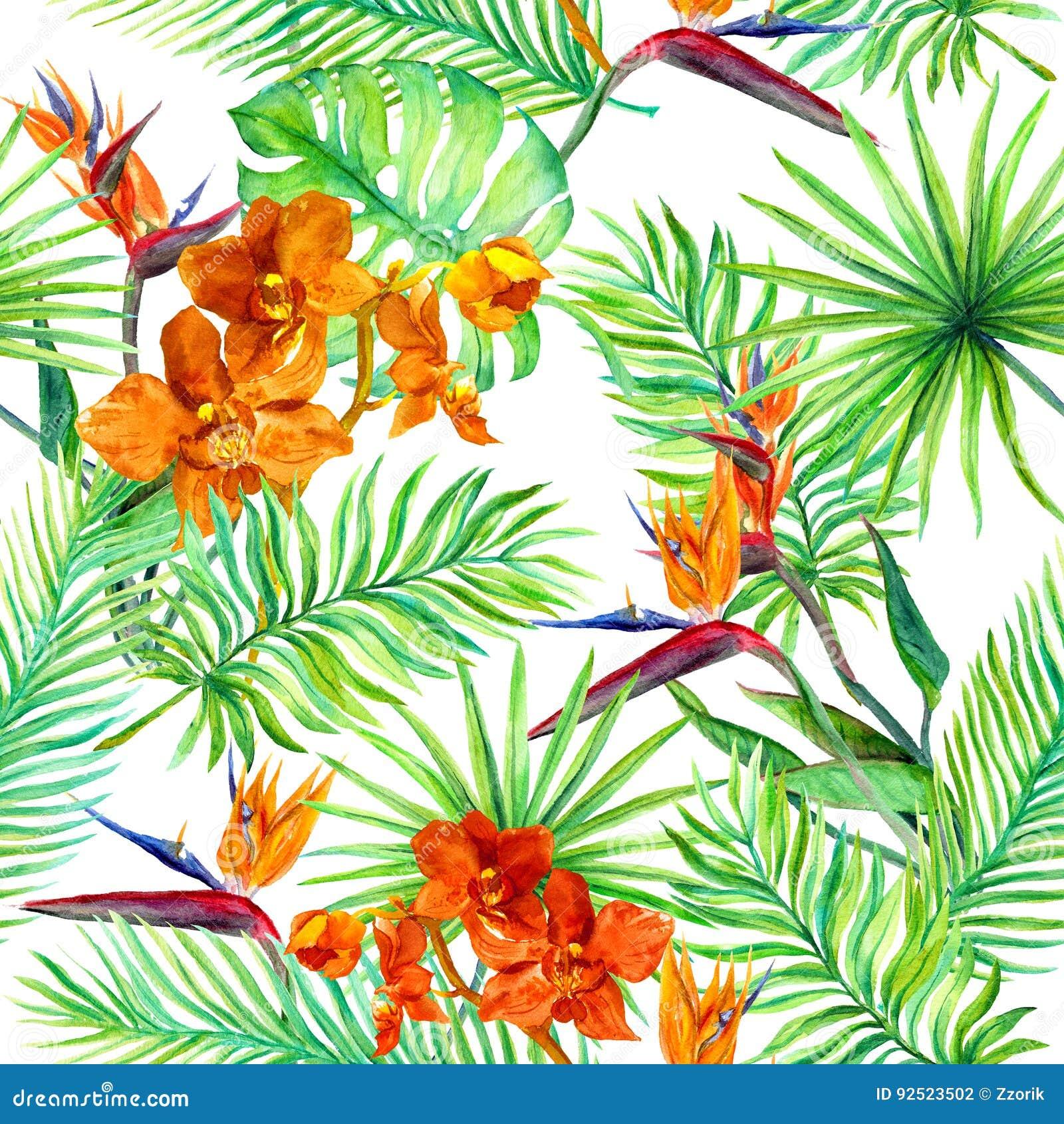 la forêt tropicale part, les fleurs exotiques - orchidée sauvage