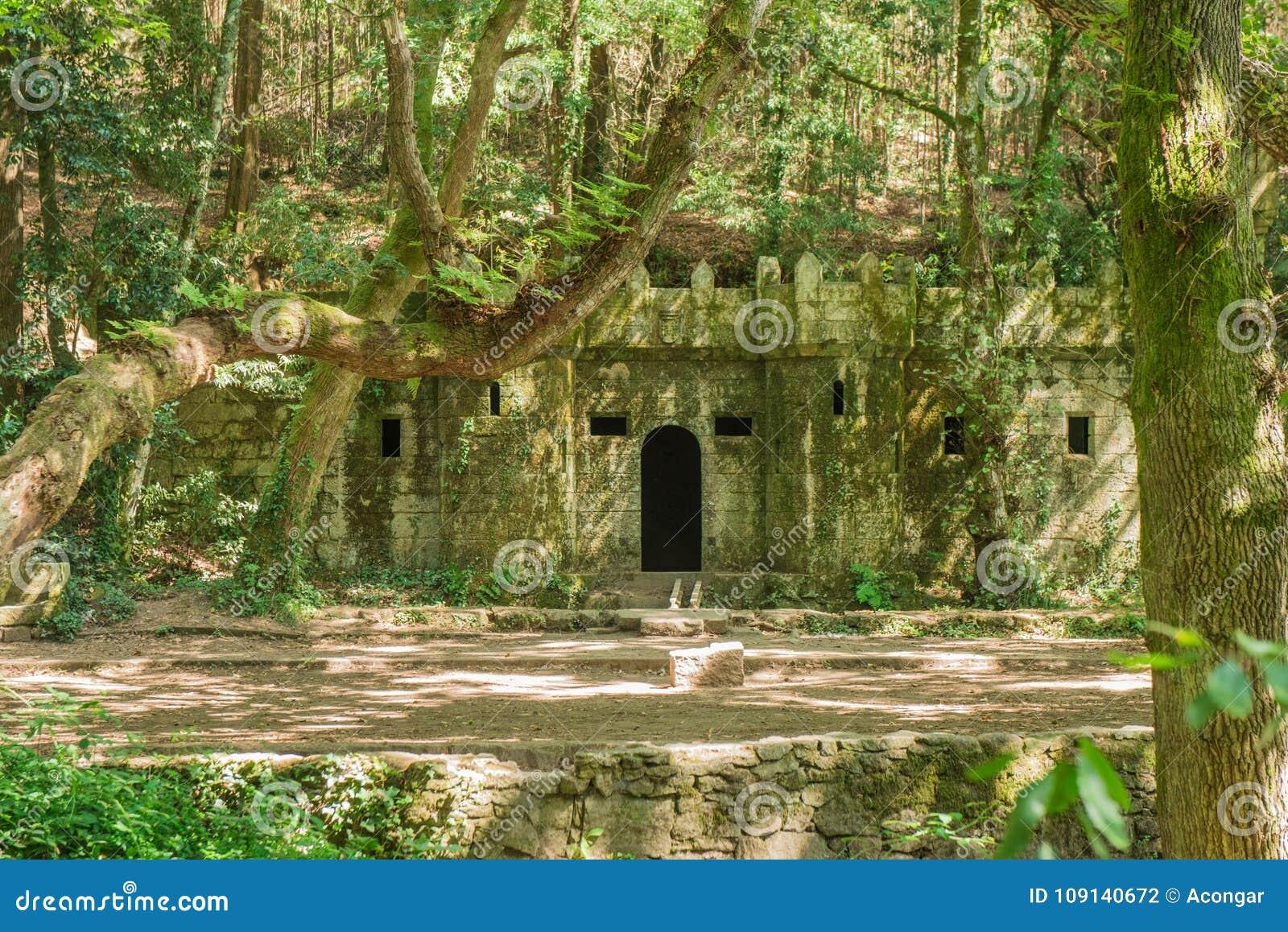 La foresta incantata di Aldan