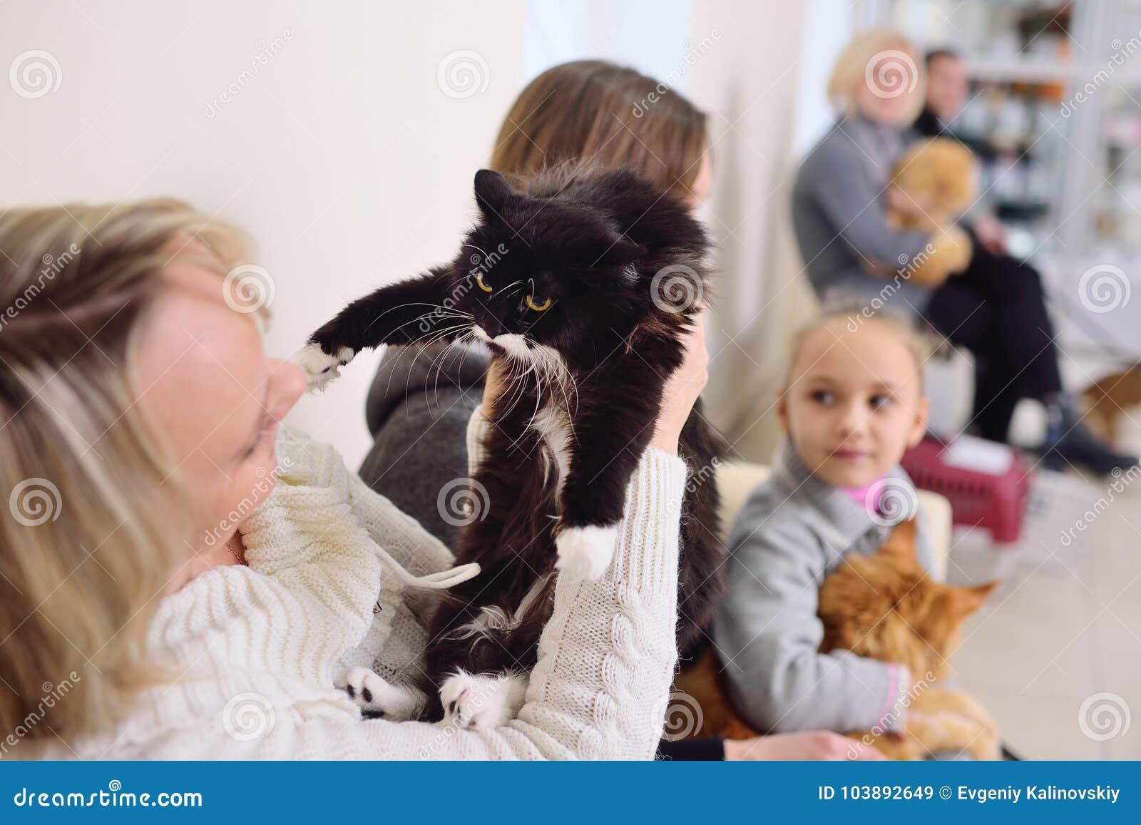 La gente con i loro animali domestici sta aspettando un esame medico alla clinica veterinaria Salute degli animali