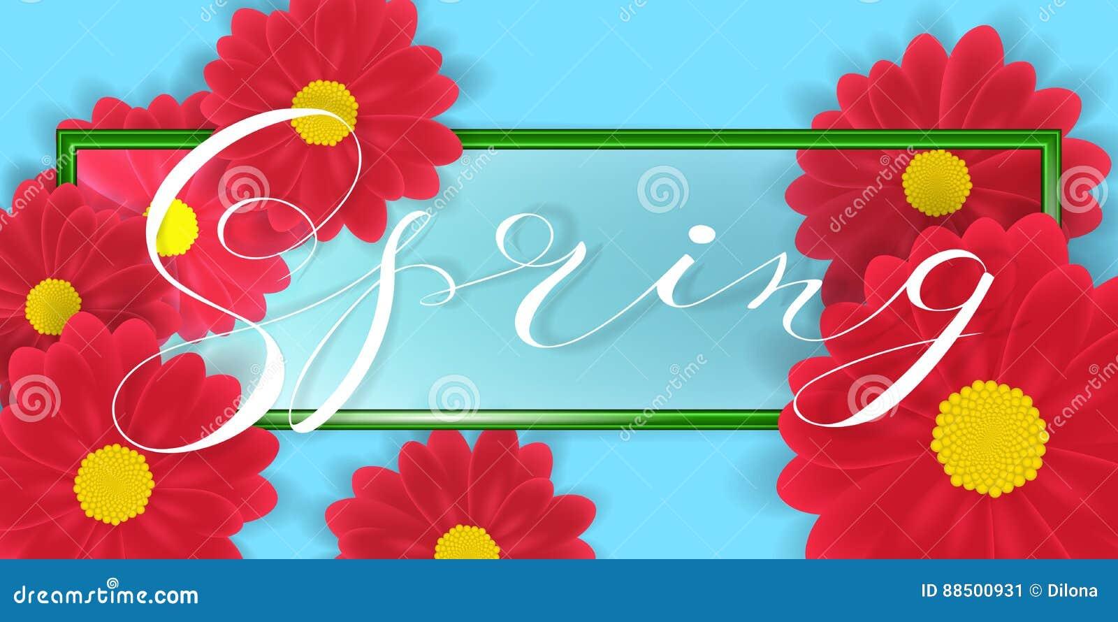 La gerbera o Daisy Flowers su fondo e sulla primavera bianchi esprime l iscrizione in confine verde Illustrazione di vettore
