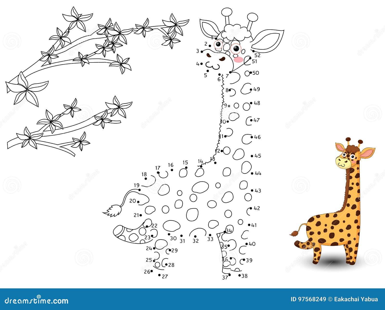 La giraffa collega i punti e colora