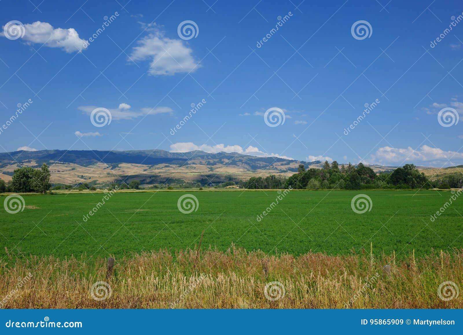 La granja y las montañas acercan al consejo, Idaho