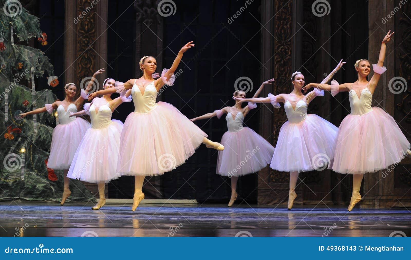 La hada del copo de nieve el segundo reino del caramelo del campo del acto segundo - el cascanueces del ballet
