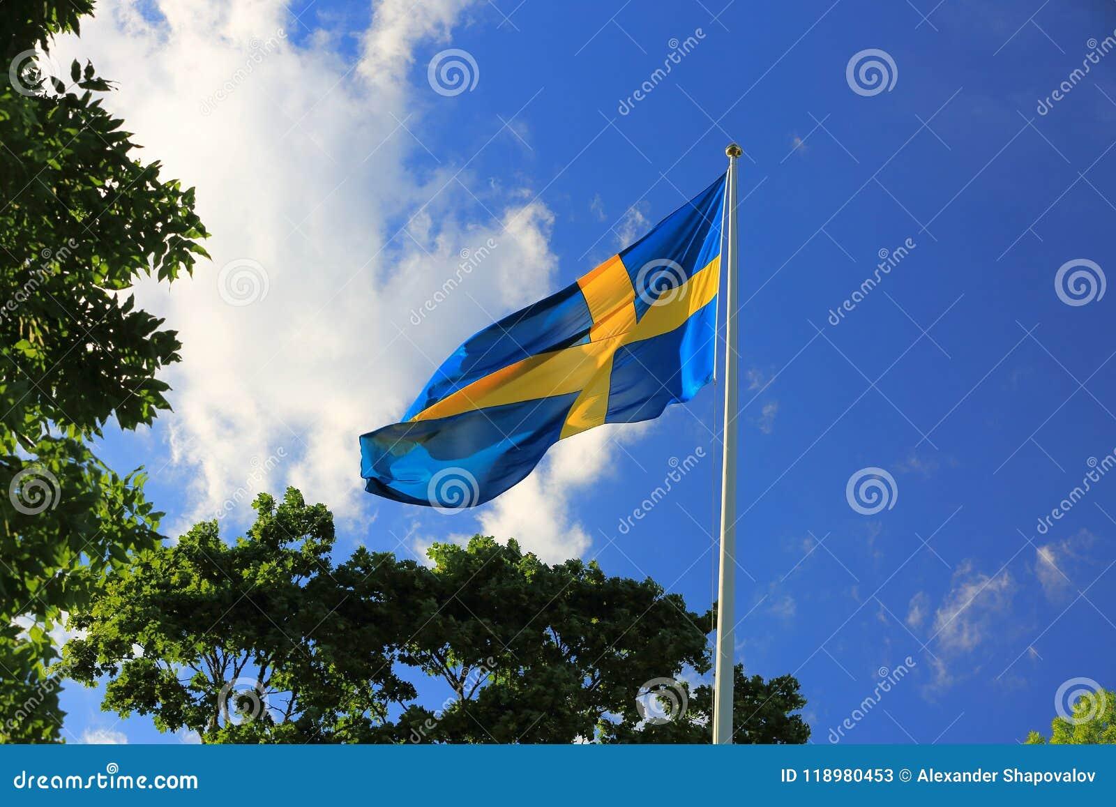 La hermosa vista de la bandera sueca en árboles verdes y del cielo azul con blanco se nubla el fondo