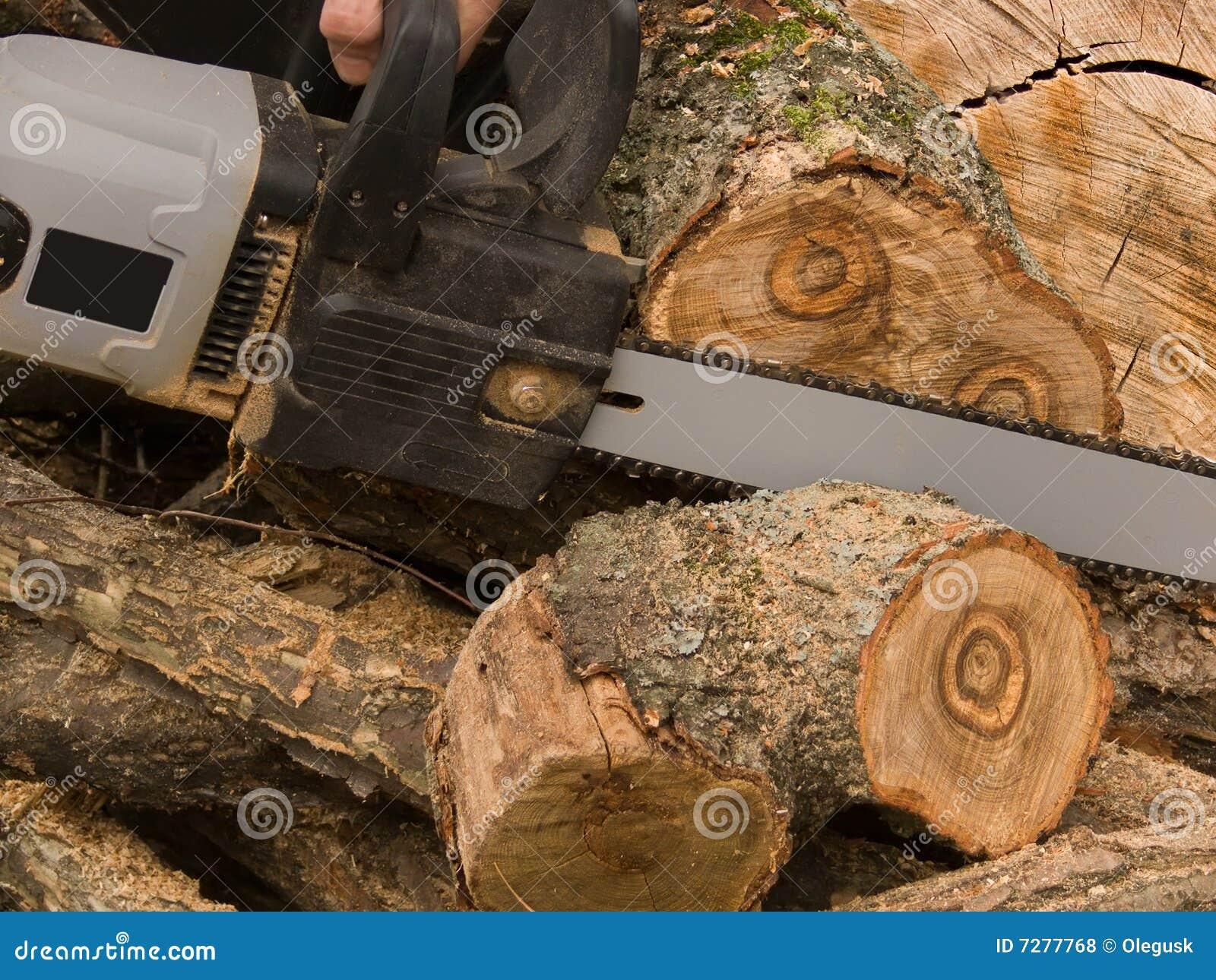 La herramienta una sierra eléctrica