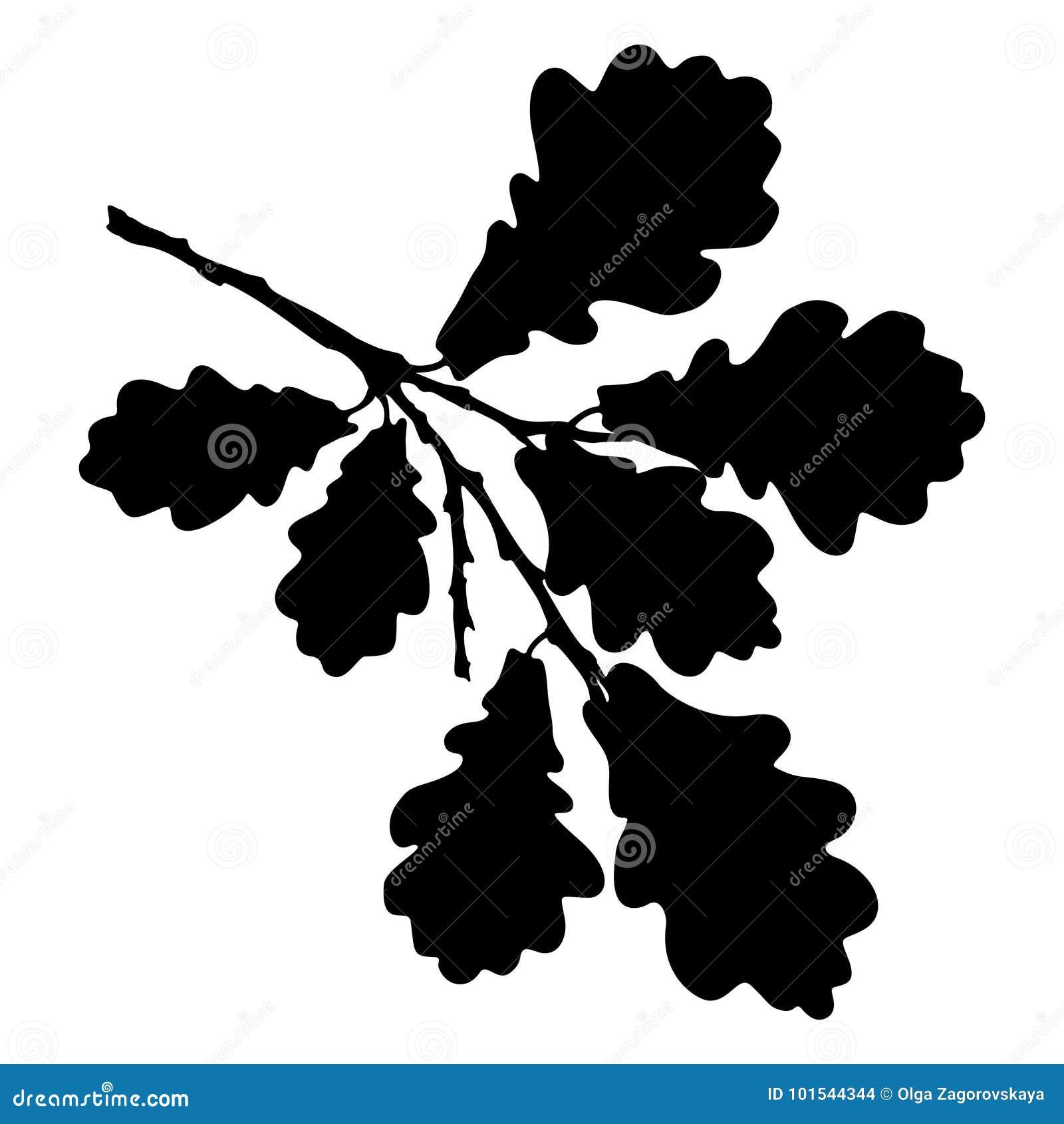 La hoja, la bellota y la rama del roble aislaron la silueta, ecología estilizada