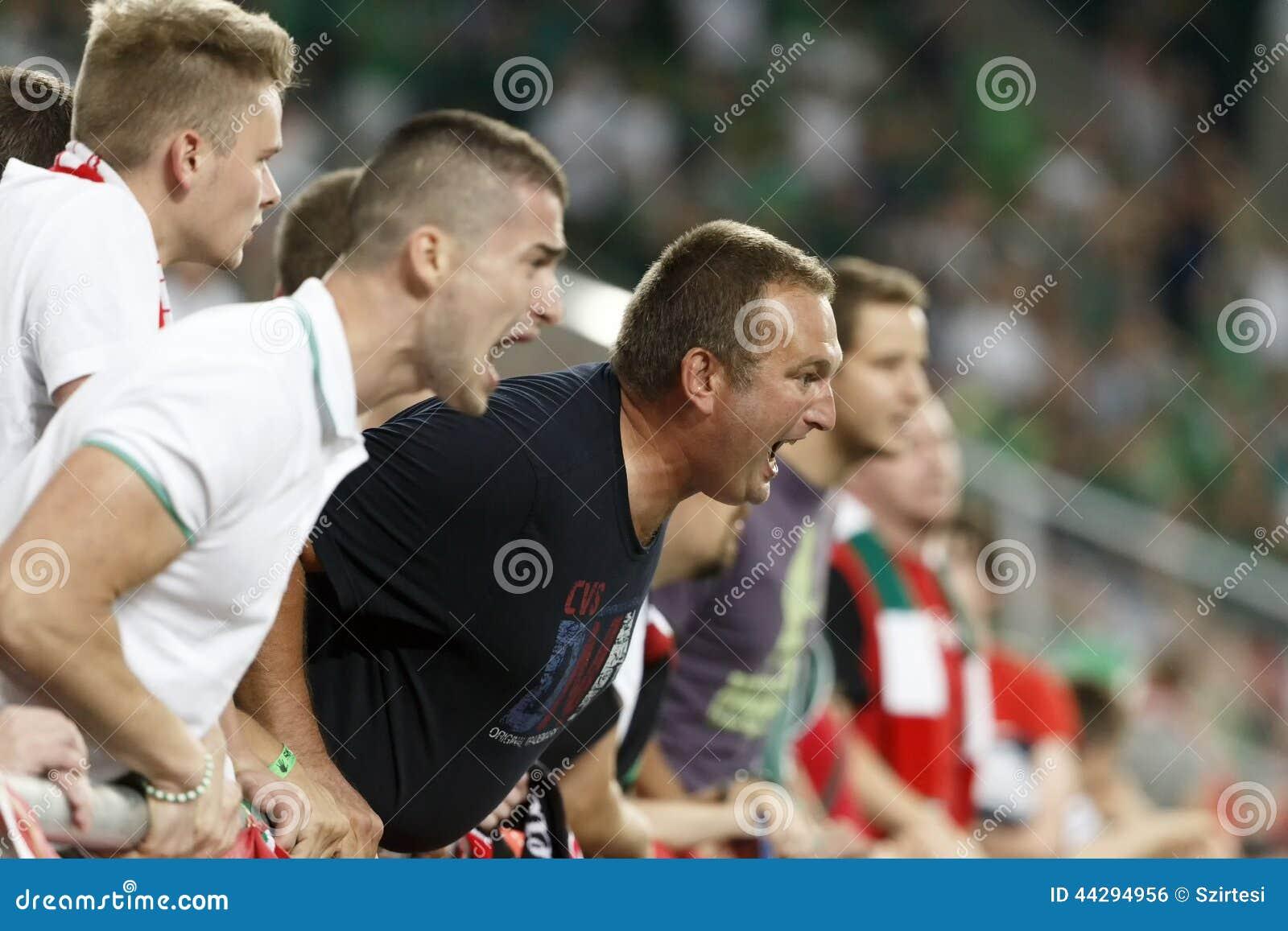 La Hongrie contre les Hollandes Le football 2016 de qualificateur d euro de l UEFA de l Irlande du Nord m