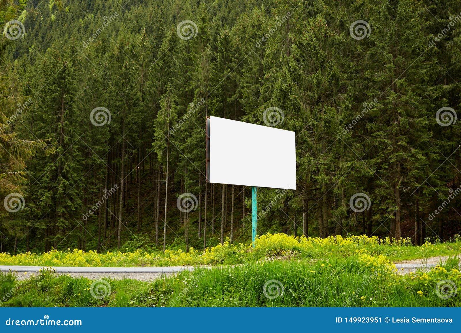 La imagen al aire libre de la cartelera enorme en blanco colocada en un camino lateral cerca de bosque, allí es muchos árboles de
