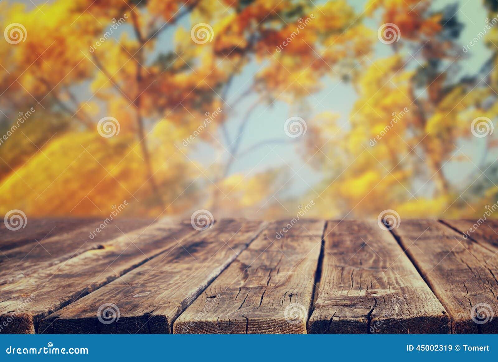 La imagen de tableros y del fondo de madera rústicos delanteros de la caída se va en bosque