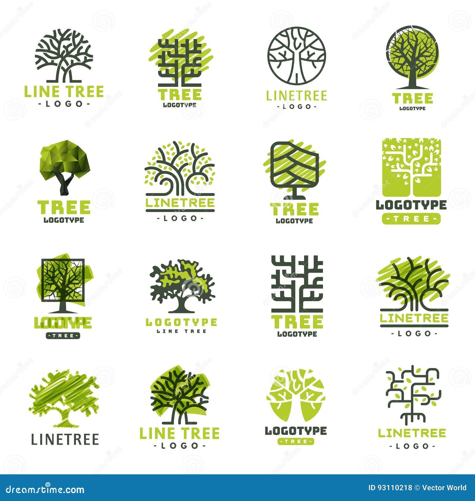 La insignia natural conífera del viaje del árbol del verde de la silueta de la insignia al aire libre del bosque remata la línea
