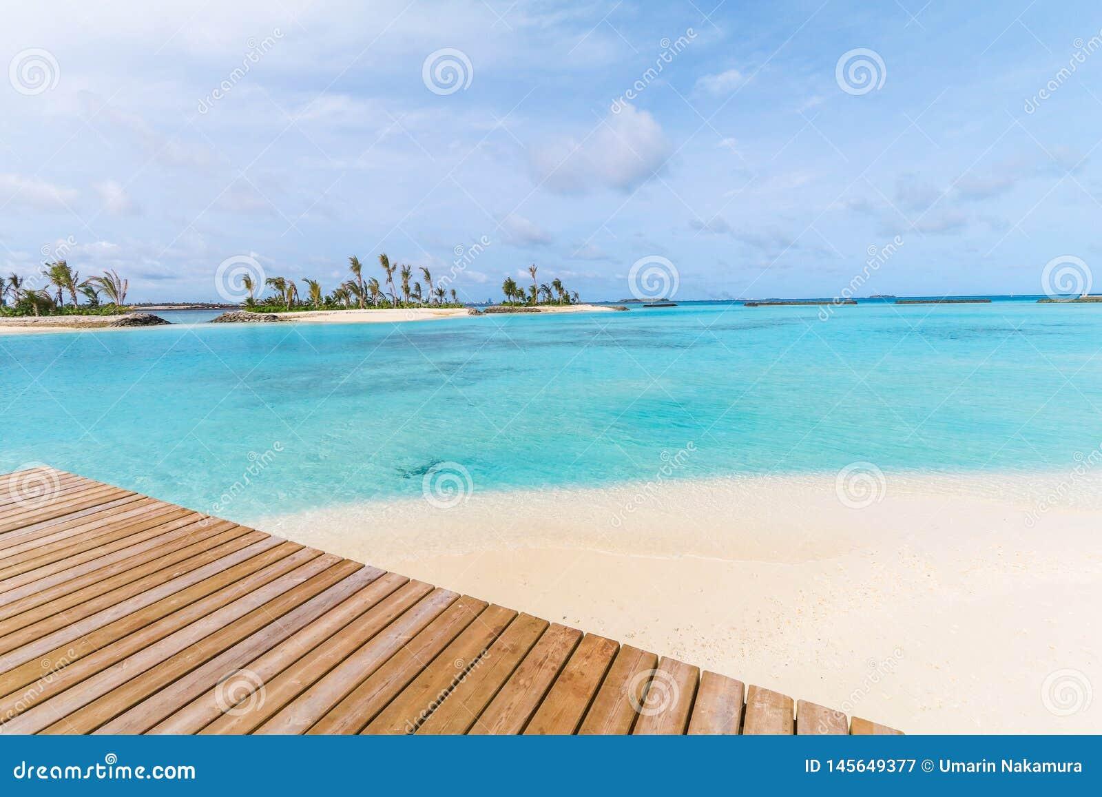 La isla asombrosa en los Maldivas, el puente de madera y la turquesa hermosa riega con el fondo del cielo azul para las vacacione