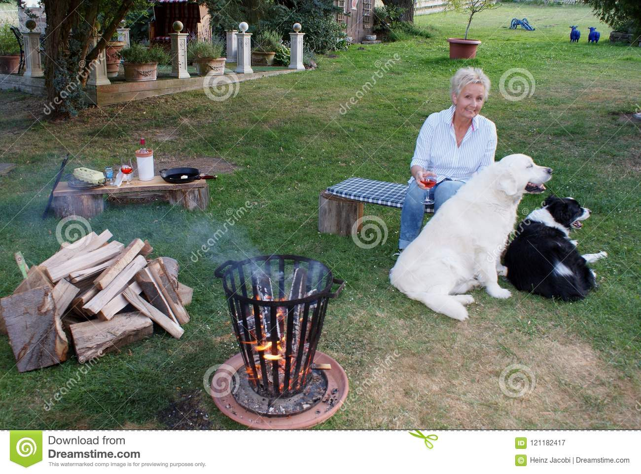La jeune femme blonde s assied avec son golden retriever et border collie par le feu de camp