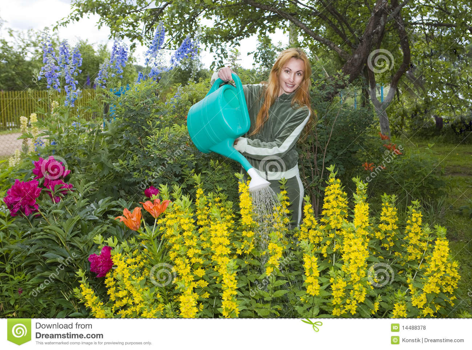 La jeune jolie femme arrose des fleurs sur le jardin photo for Le jardin des fleurs latresne