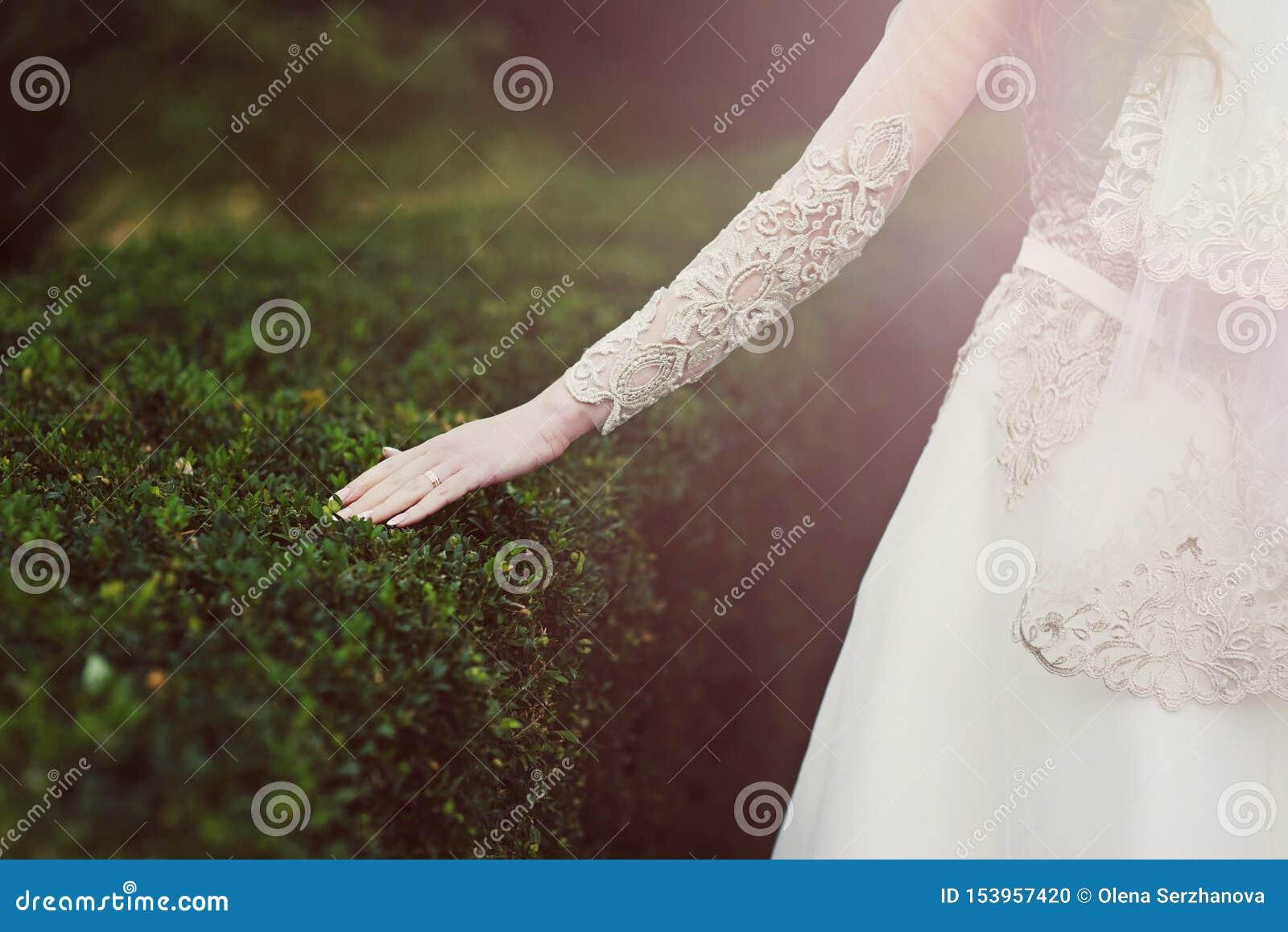 La jeune mariée touche le buisson vert en parc