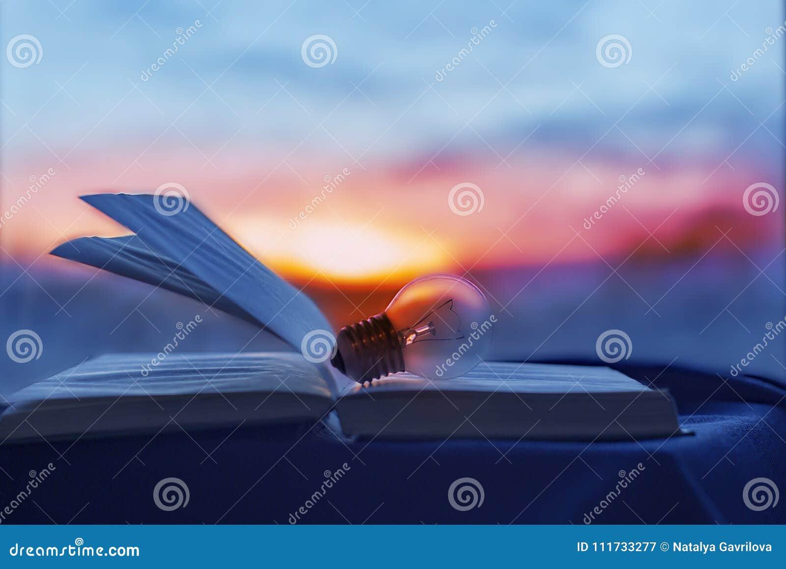 La lampadina si trova nel libro aperto, la luce dello scienziato