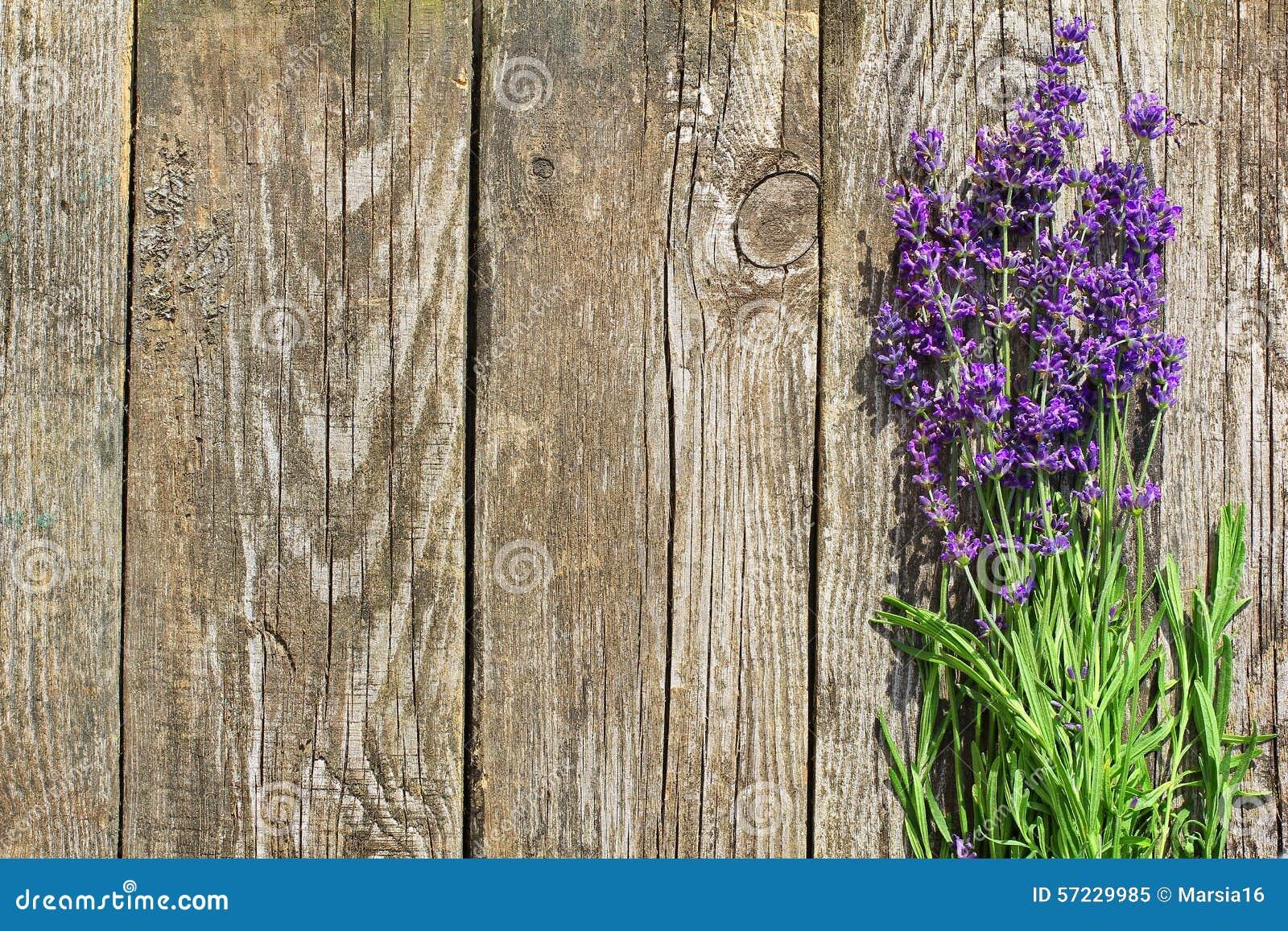 La lavande en bois fleurit le fond