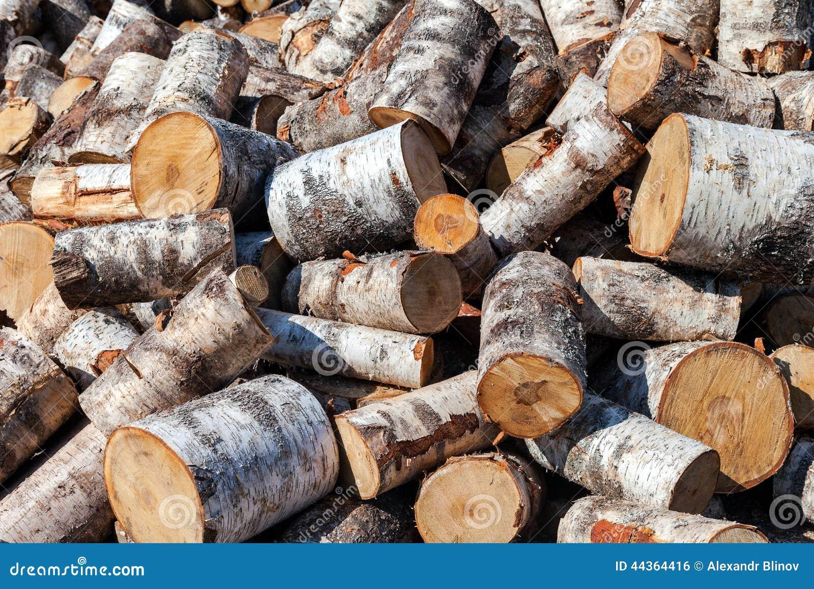 La legna da ardere tagliata della betulla collega il mucchio Priorità bassa della natura