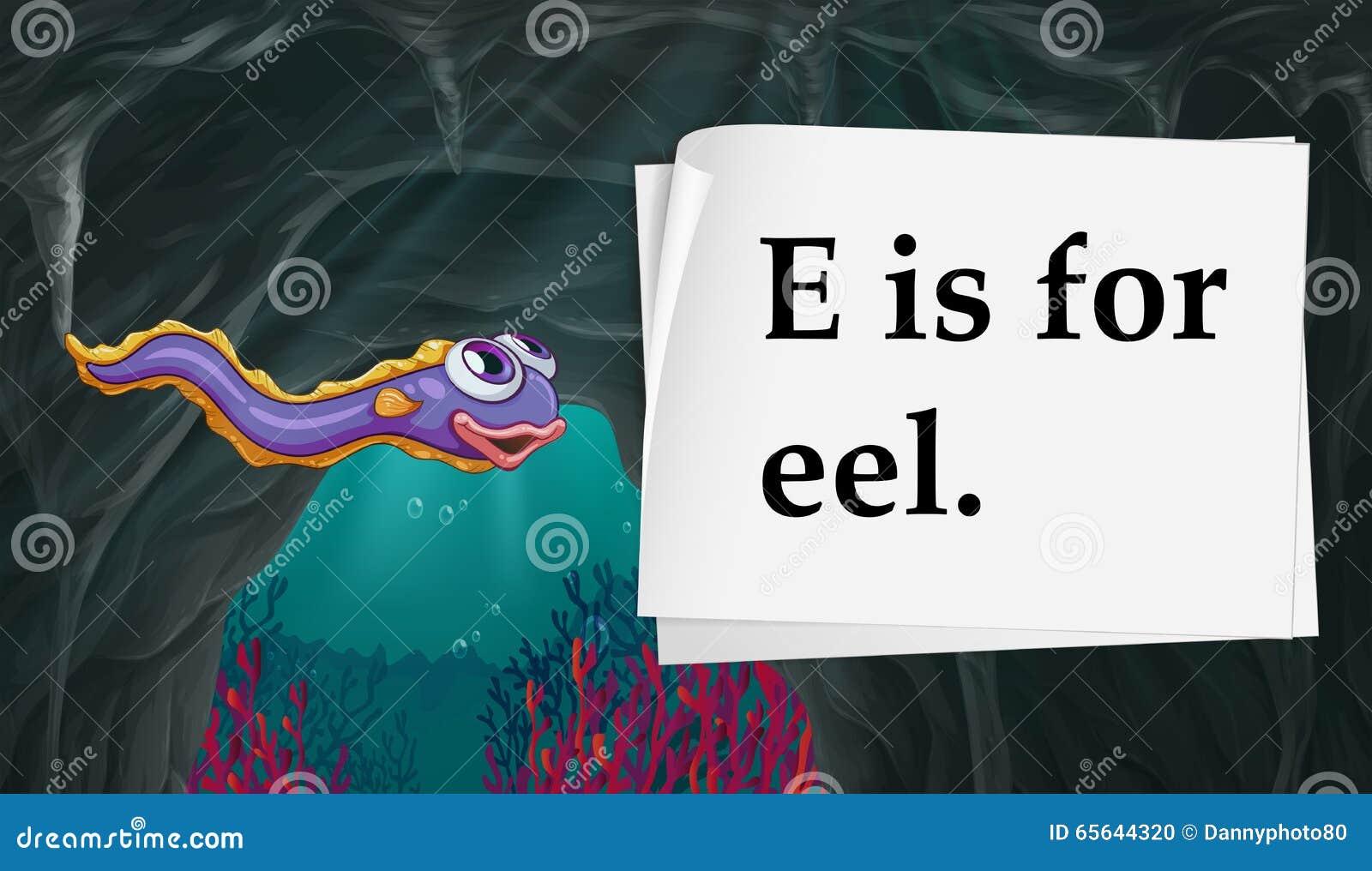 La lettre E est pour l anguille