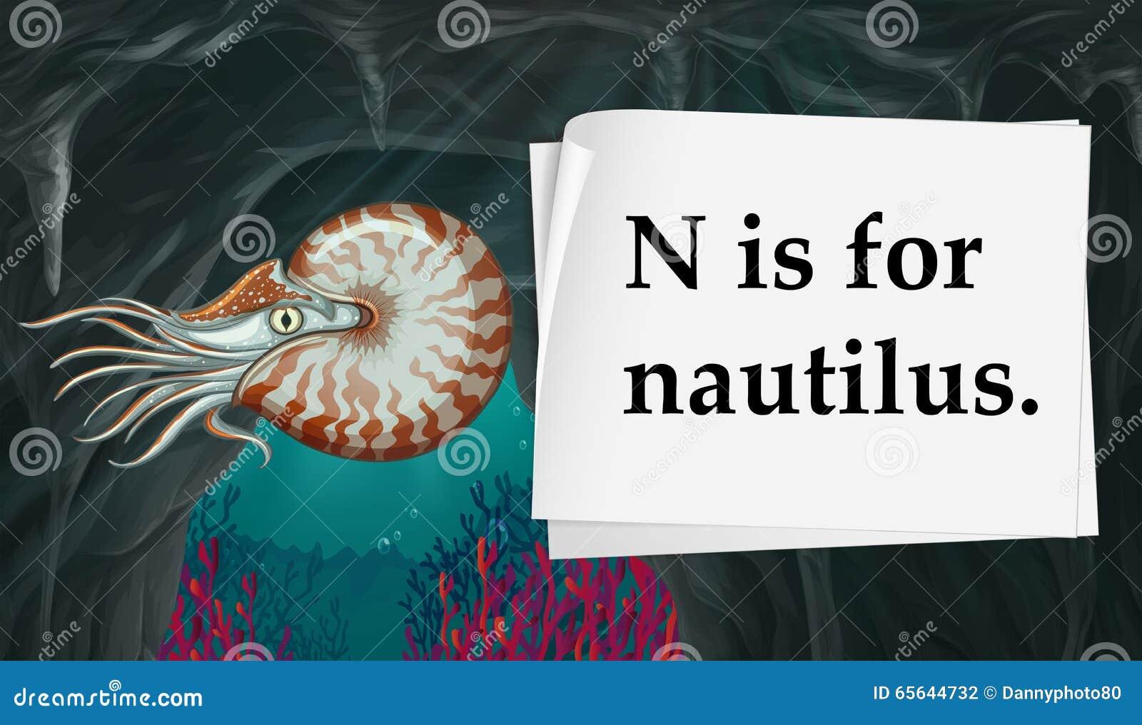 La lettre N est pour le nautilus