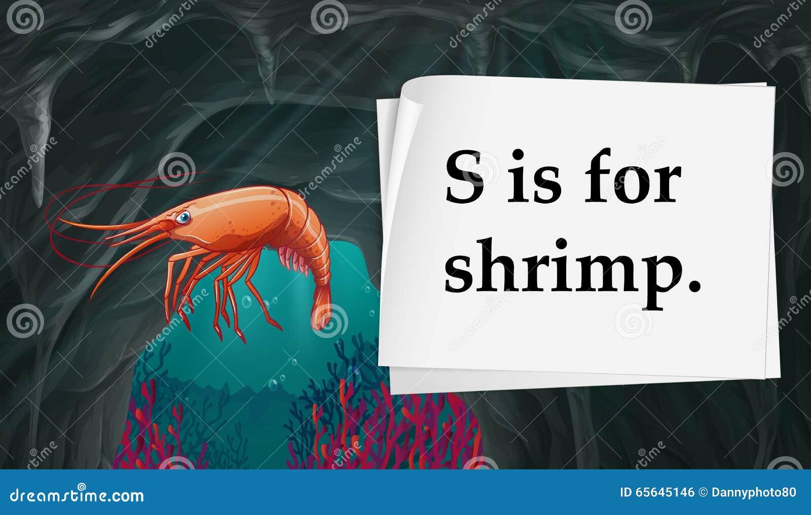 La lettre S est pour la crevette