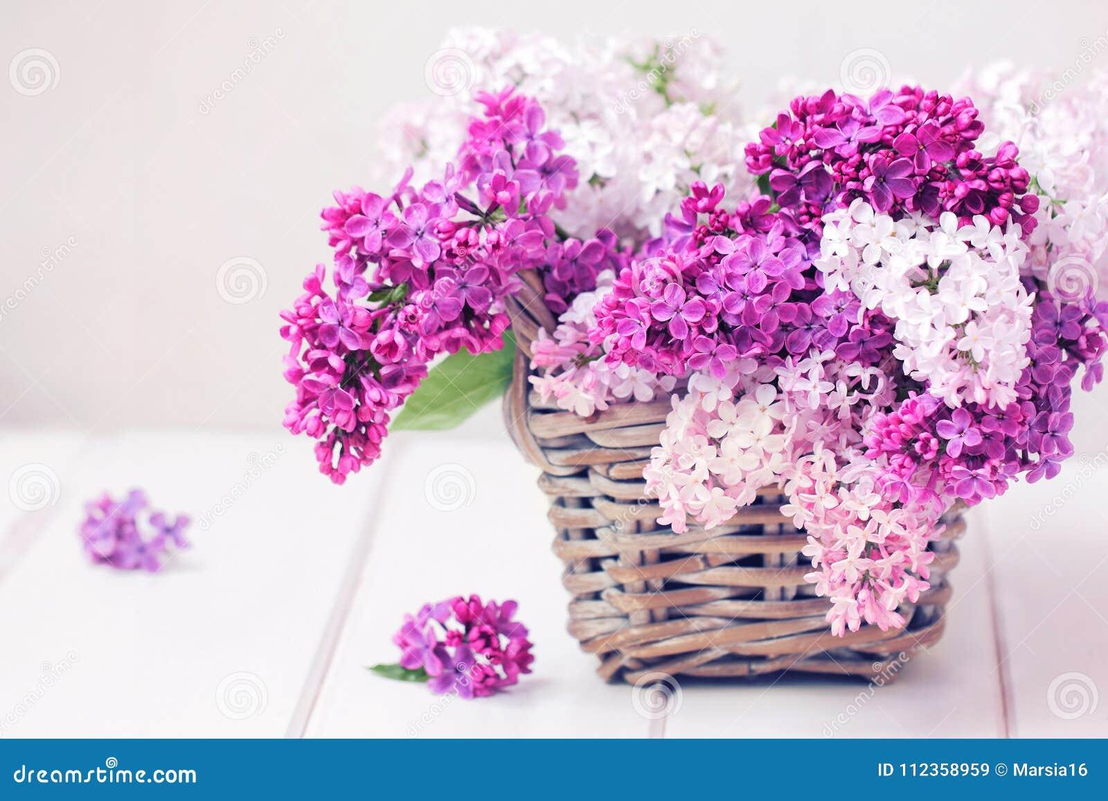 La lila florece el ramo en la cesta de Wisker