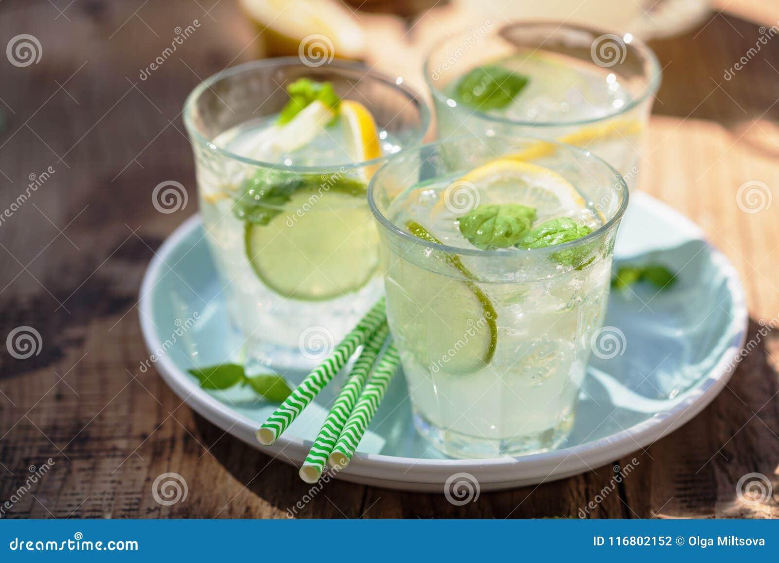 La limonata di rinfresco beve con il limone della calce della menta in giardino