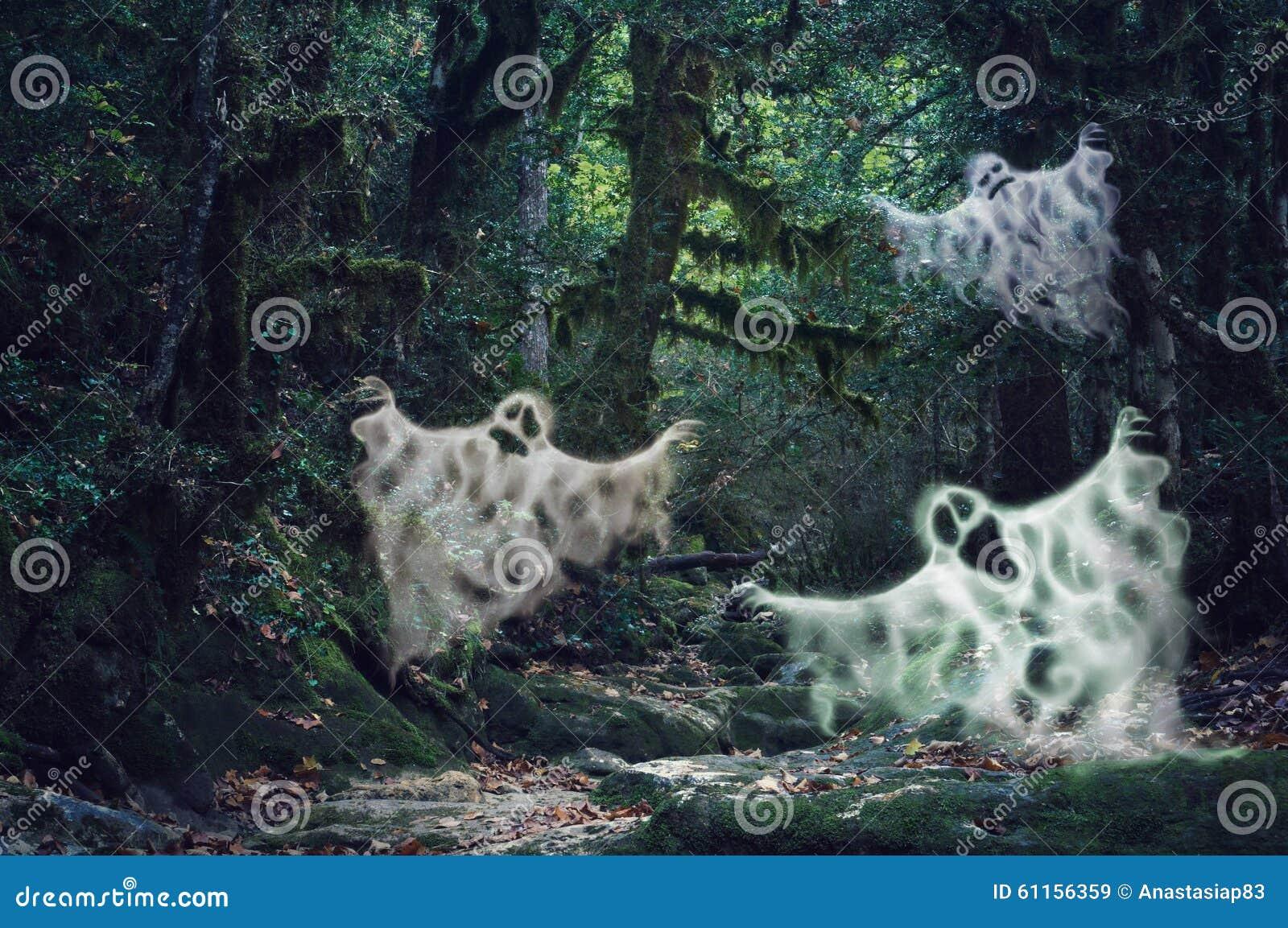 La luce tenue magica ha frequentato la foresta con tre fantasmi spaventosi